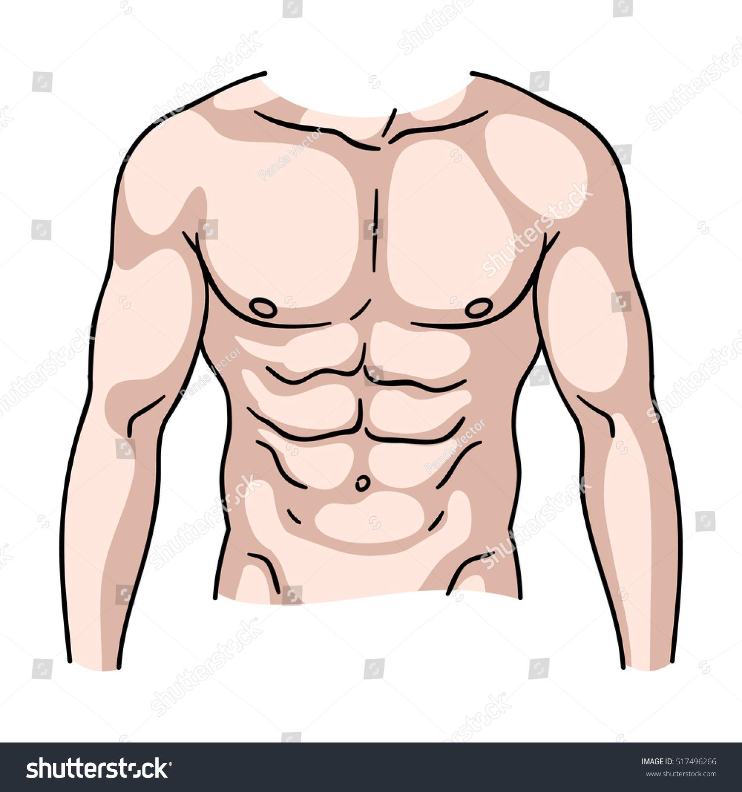 3d Illustration Of Human Body Organs Heart Anatomy Ez Canvas