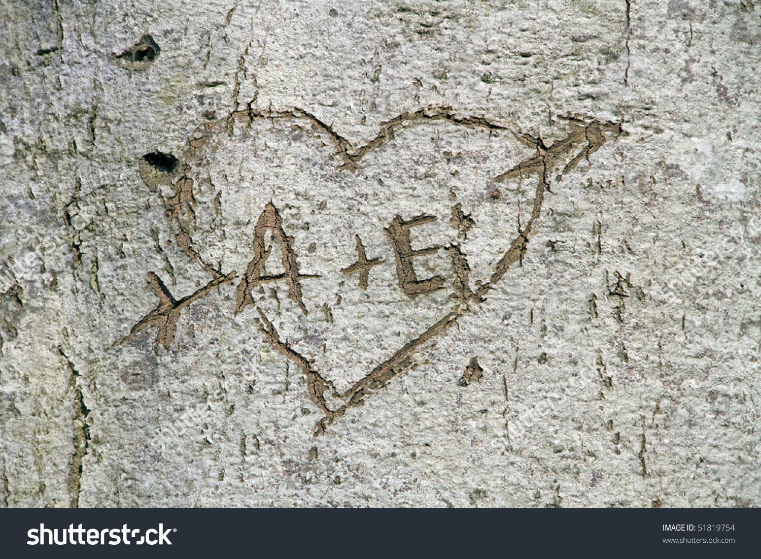 Love heart carved into tree stock photo