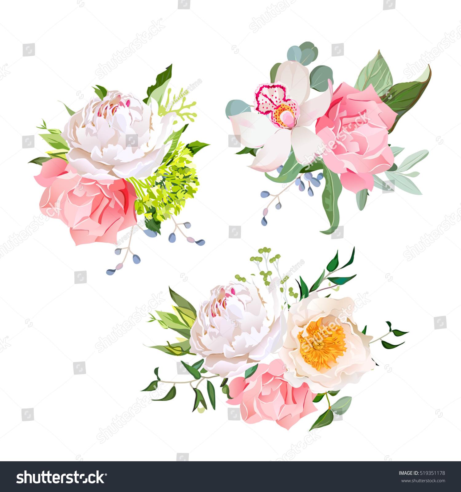 Feuille D Eucalyptus Bouquet image vectorielle de stock de mélange élégant de bouquets de