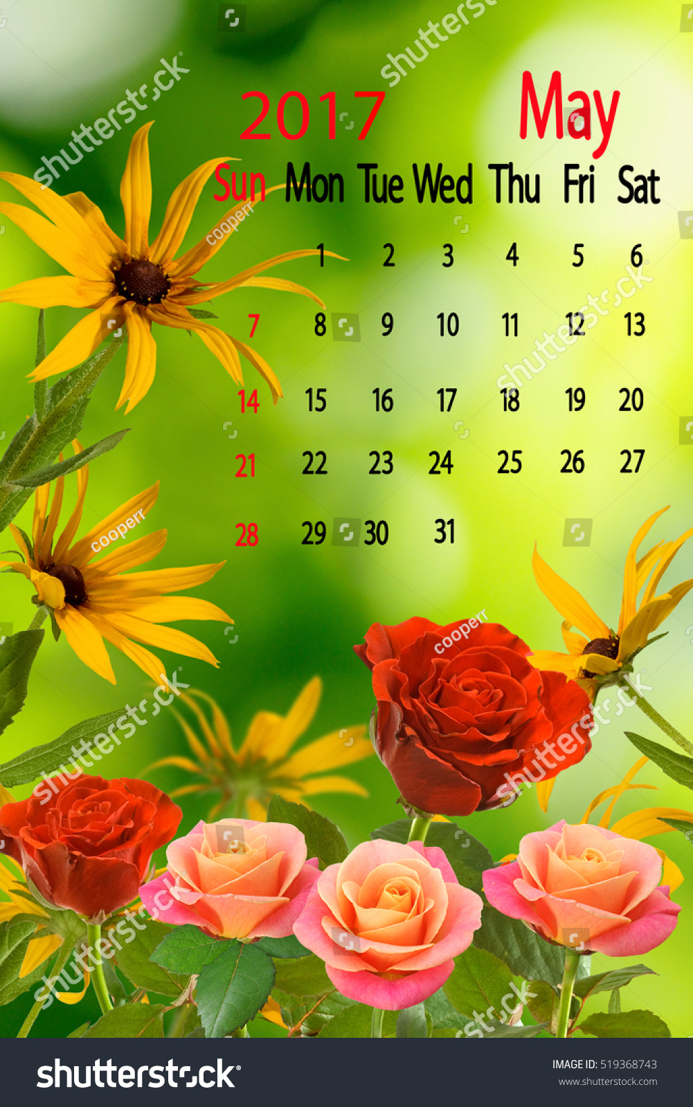 Image Beautiful Different Flowers On Green Stock Photo Edit Now
