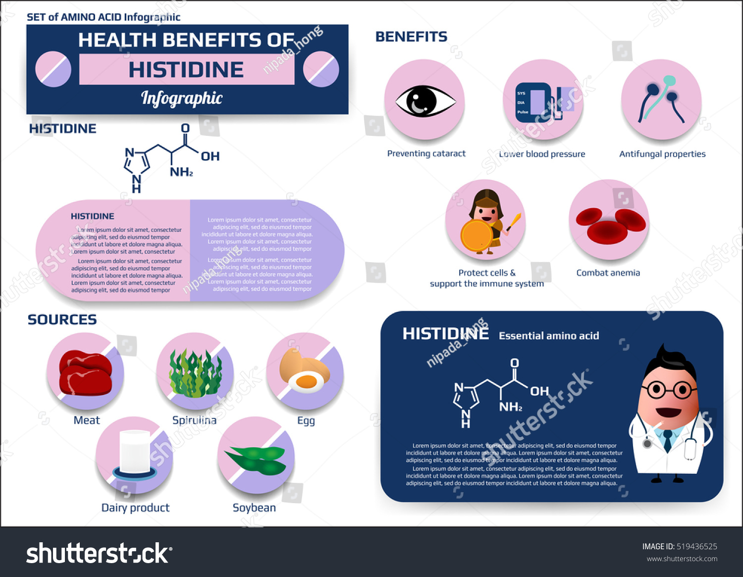 amino acid supplements benefits set health benefits histidine essential amino stock vector 17711