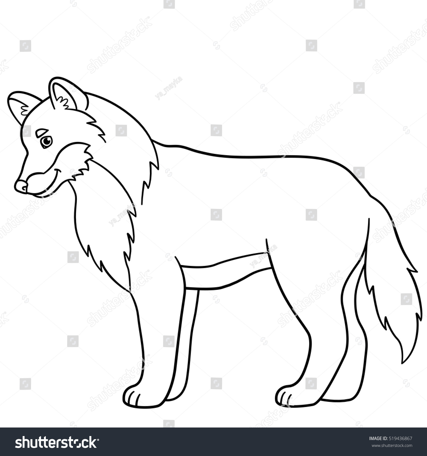 Coloring pages. Cute beautiful wolf stands and smiles. | EZ Canvas