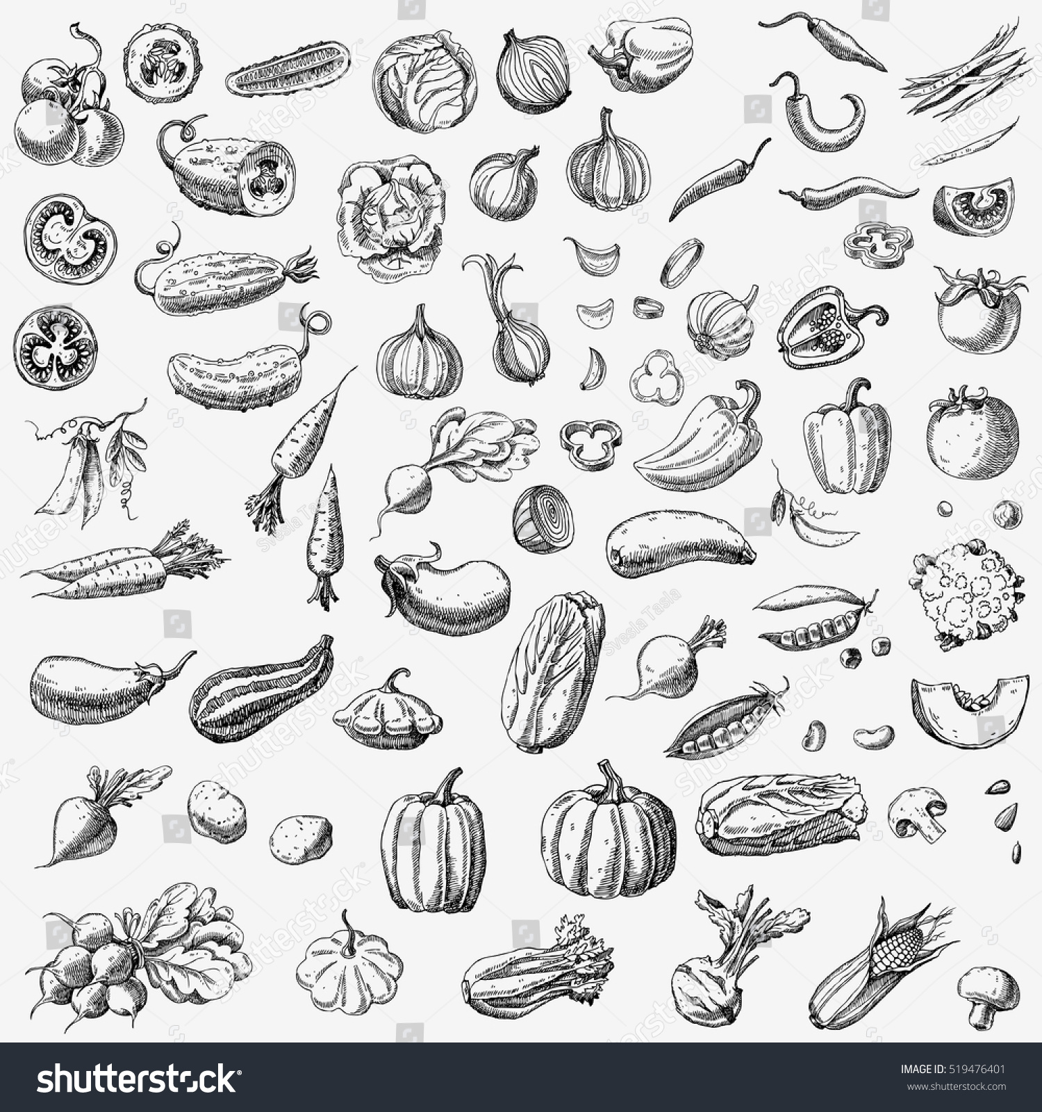 Set of various hand drawn vegetables. Sketches of different food. Isolated on white #519476401