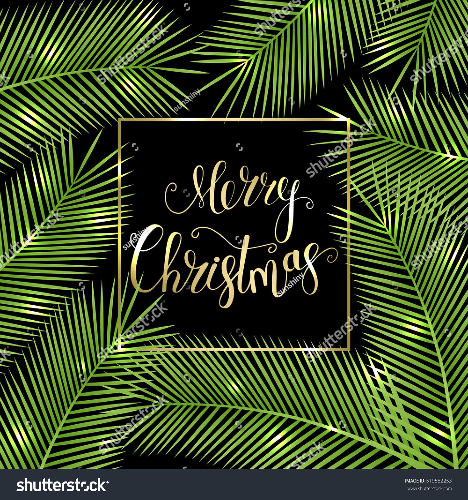 Congratulation Merry Christmas Tropical Christmas Card Stock Vector