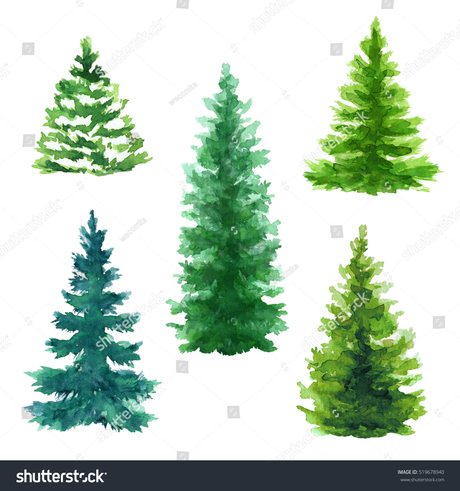 evergreen trees clip art set christmas stock illustration
