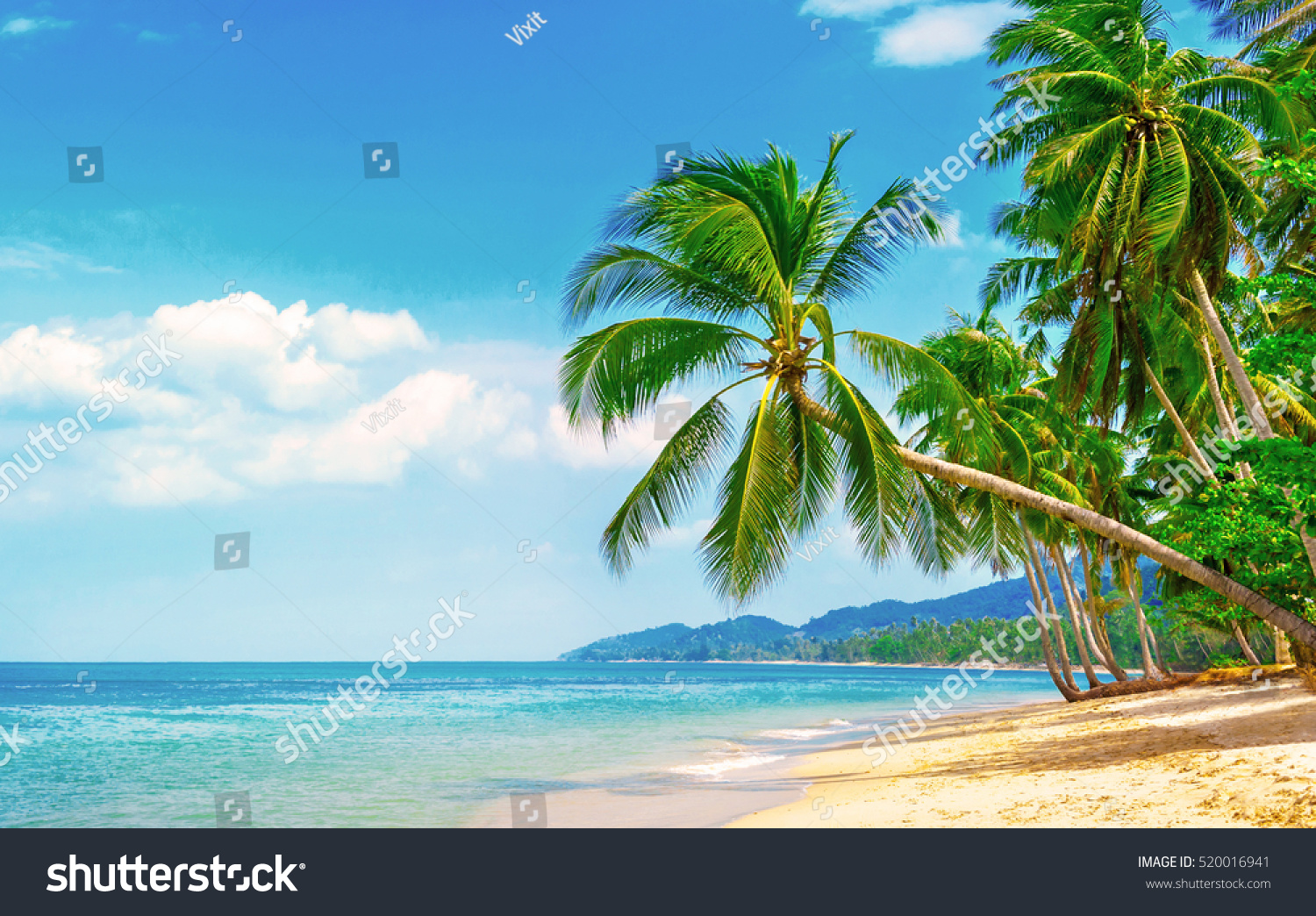 Beautiful beach. View of nice tropical beach with palms around. Holiday and vacation concept.  Tropical beach. #520016941
