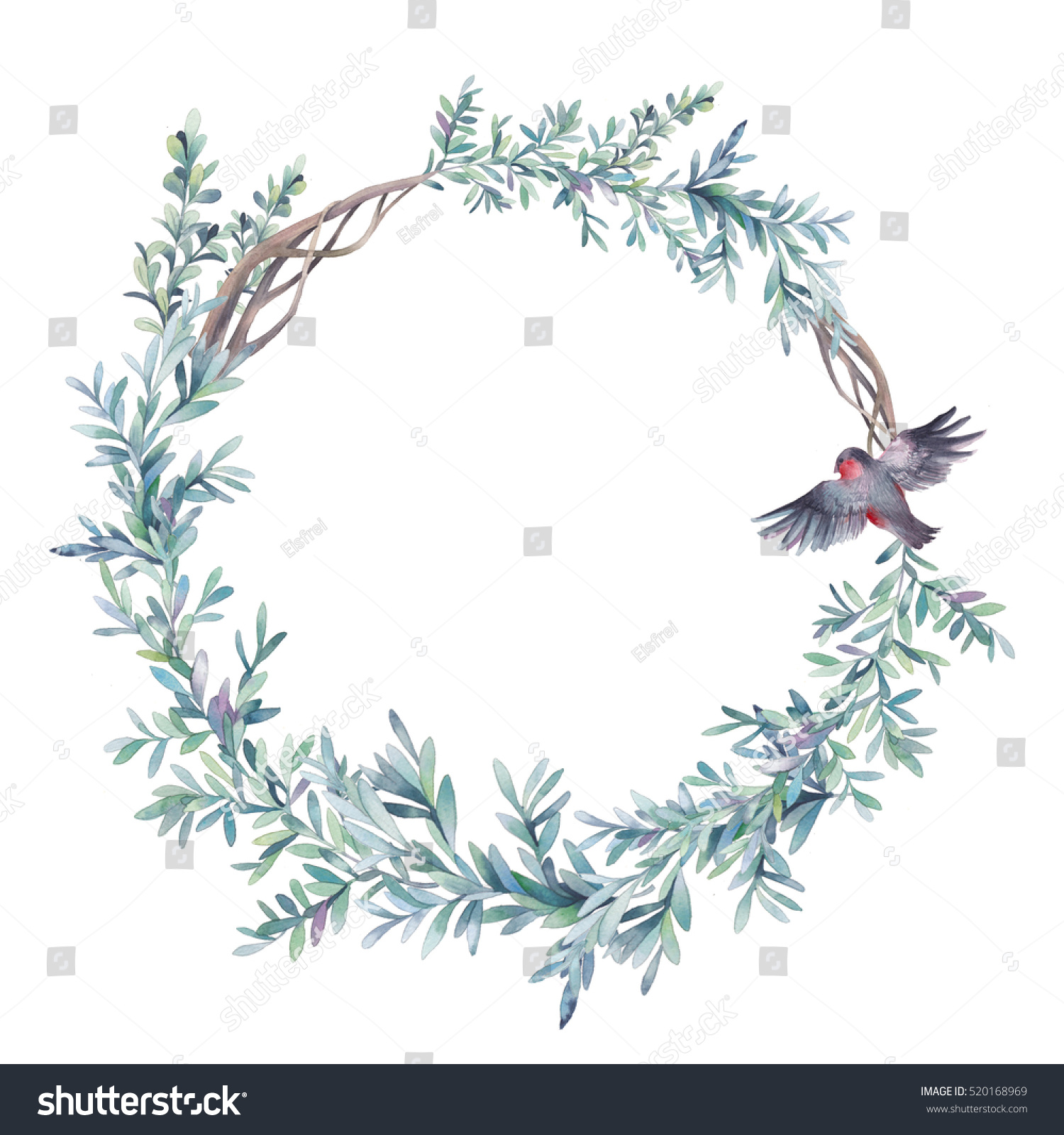Watercolor winter floral wreath bullfinch bird stock - White painted tree branches ...