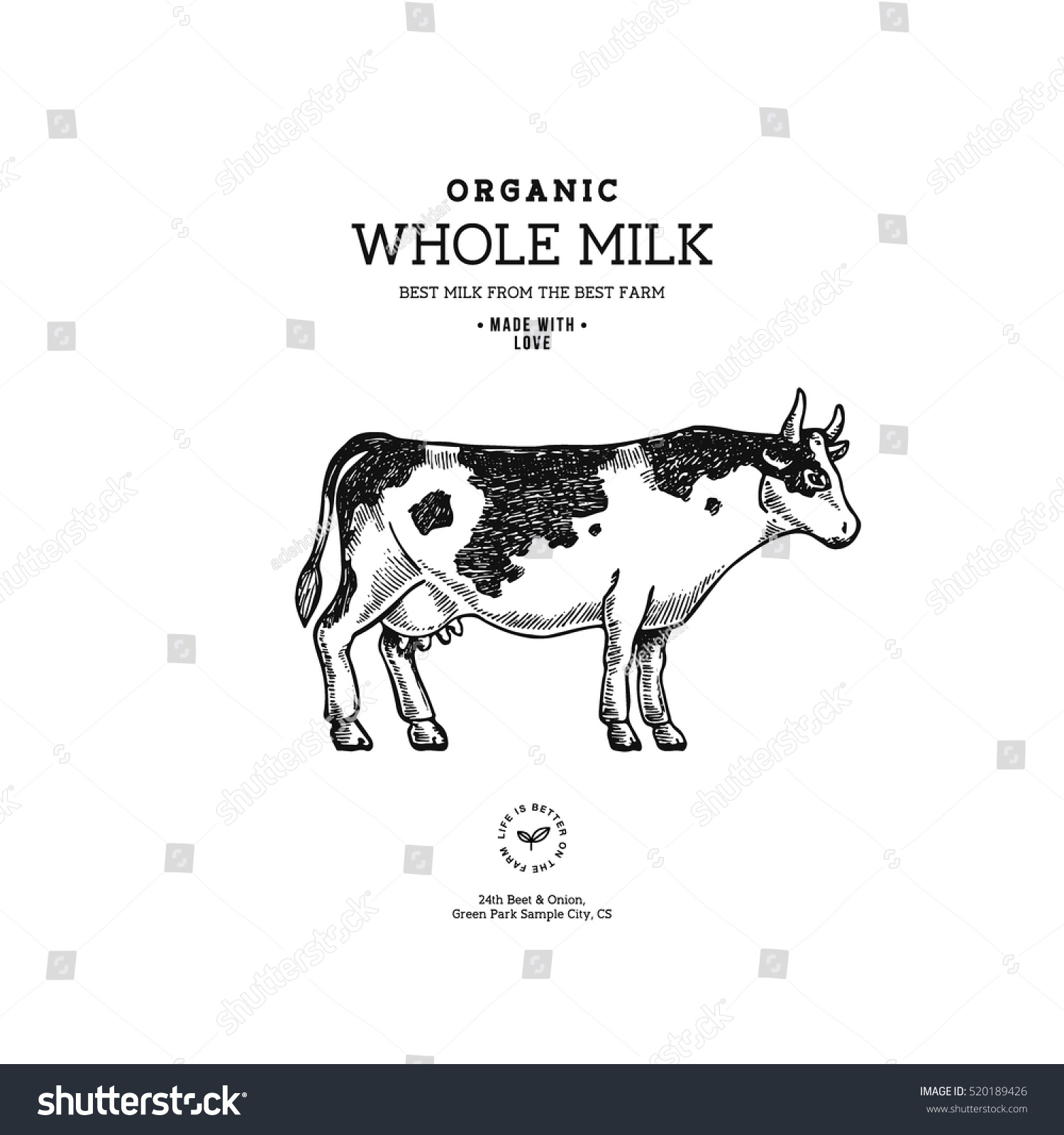 Farm Cow Vintage Logo Cow Illustration Stock Vector 520189426 ...