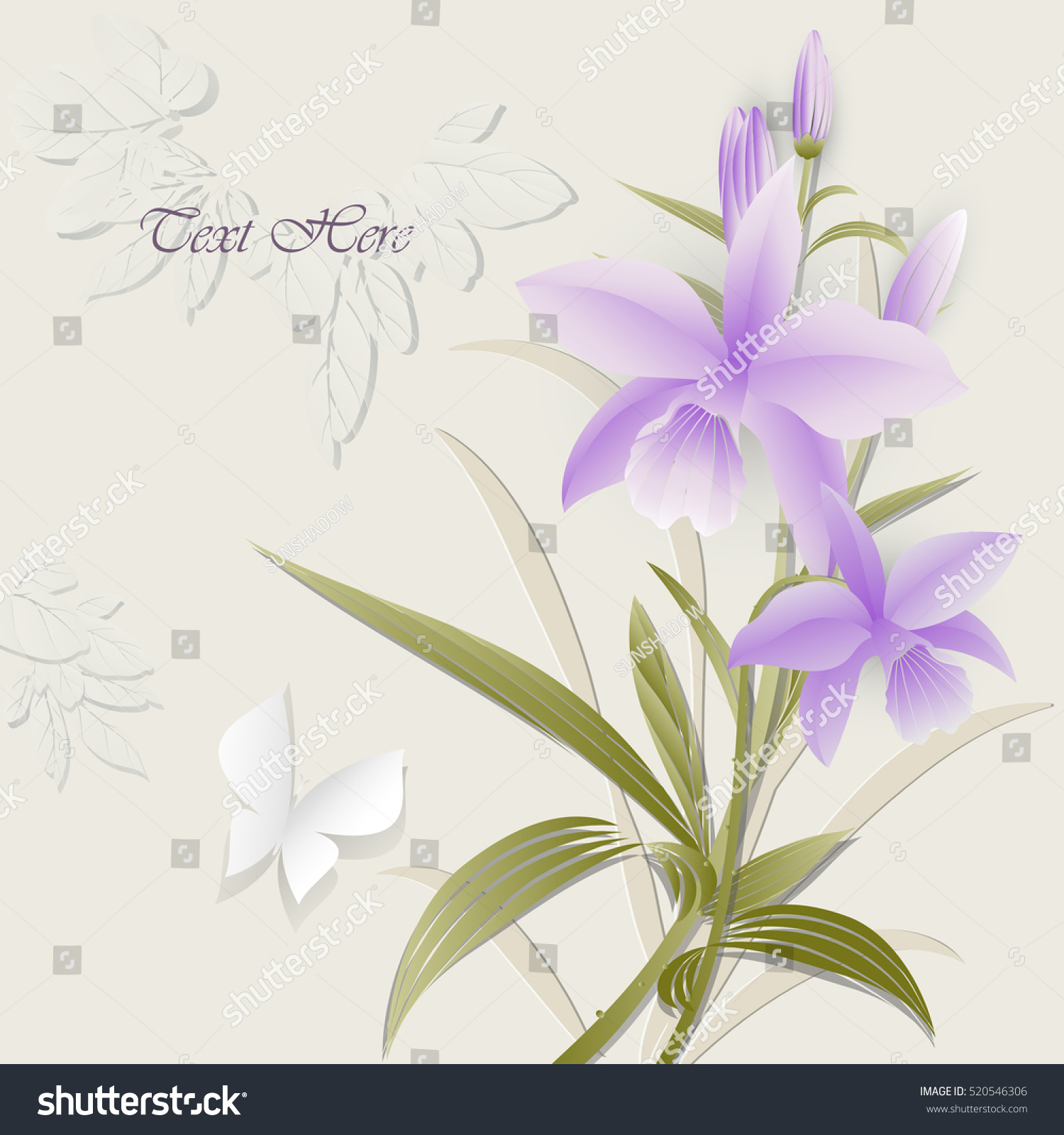 Orchid Flower Greeting Cards Beautiful Flowers Stock Vector Royalty
