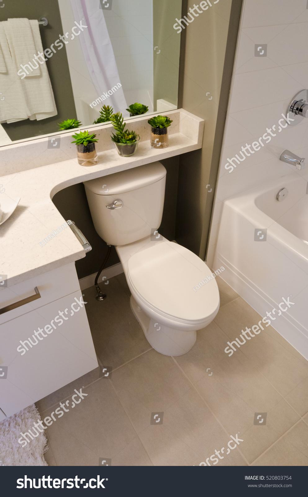 Nicely Decorated Modern Washroom Bathroom Toilet Stock Photo (Edit ...