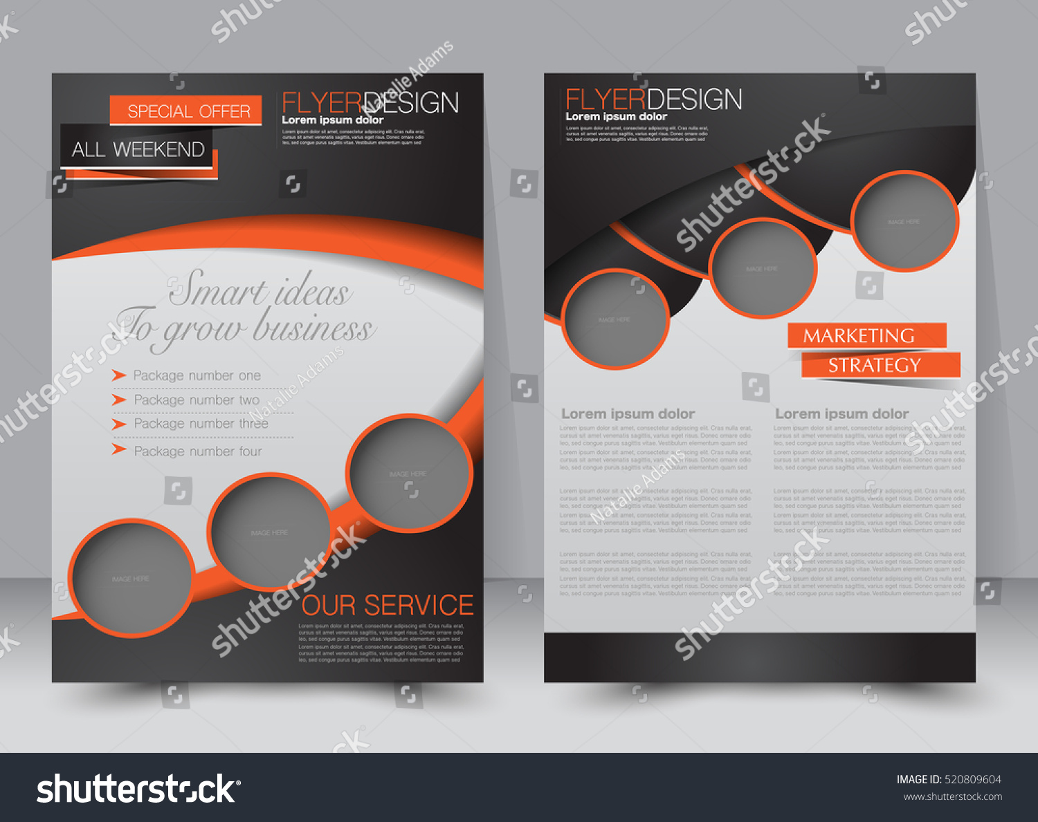 Brochure Template Business Flyer Annual Report Stock Vector 520809604