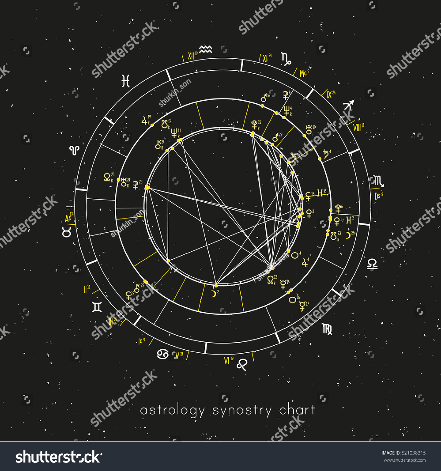 Example Astrological Synastry Chart Planets Houses Stock Vector