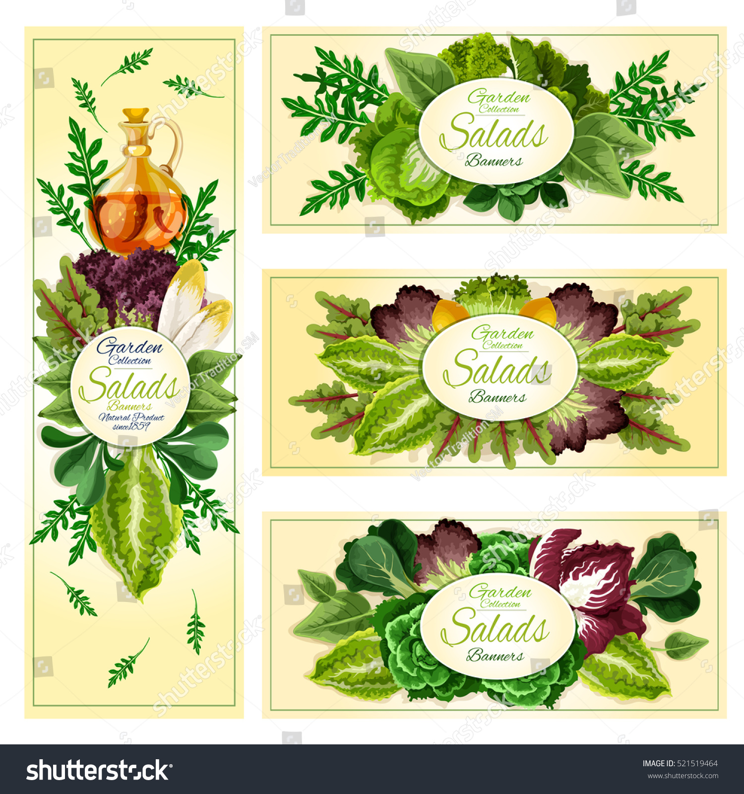 Salad Leaf And Vegetable Banners With Lettuce Spinach And Chinese Cabbage Arugula And Iceberg
