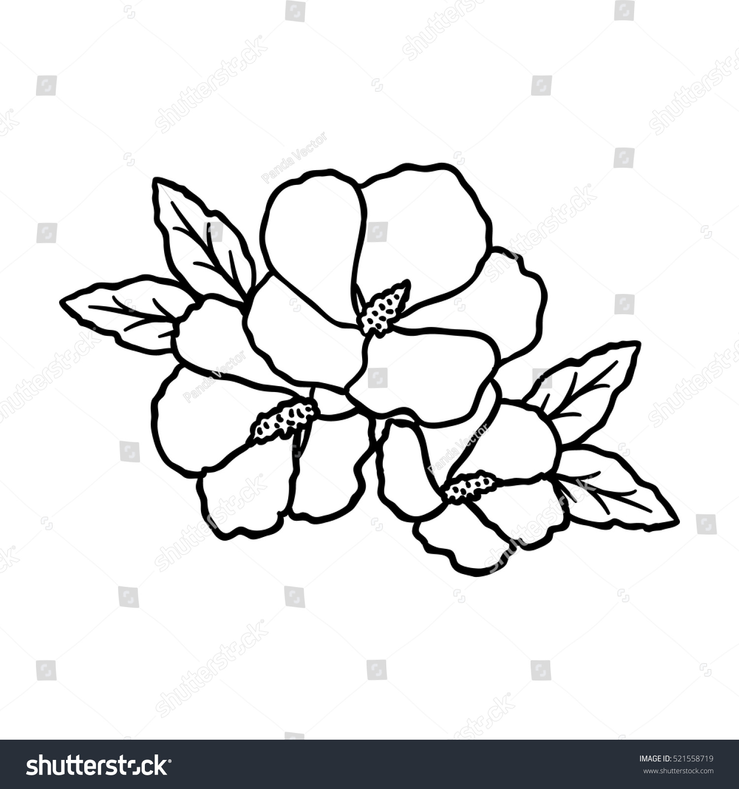 South korea coloring book - Rose Of Sharon Icon In Outline Style Isolated On White Background South Korea Symbol Stock
