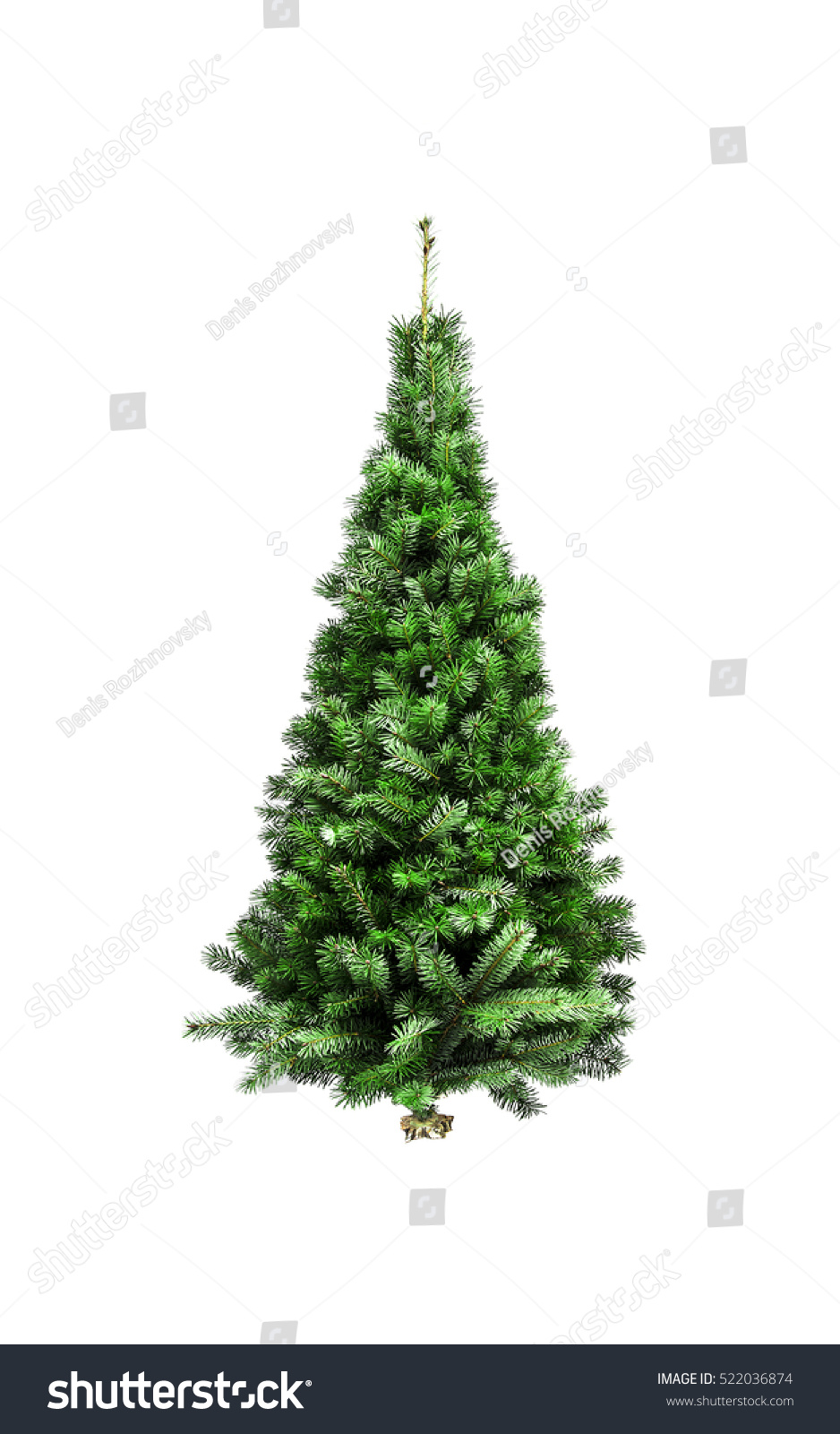 christmas tree without ornaments isolated on a white top view christmas tree without ornaments on a white stock