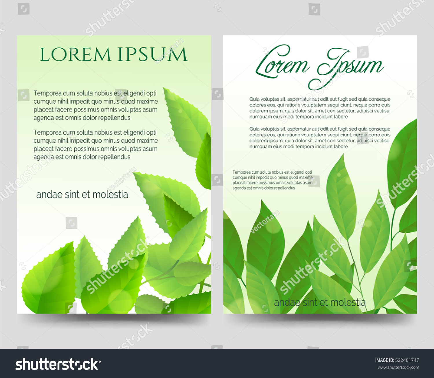 Spring Flyers Template Design Green Leaves Vector 522481747 – Spring Flyer Template