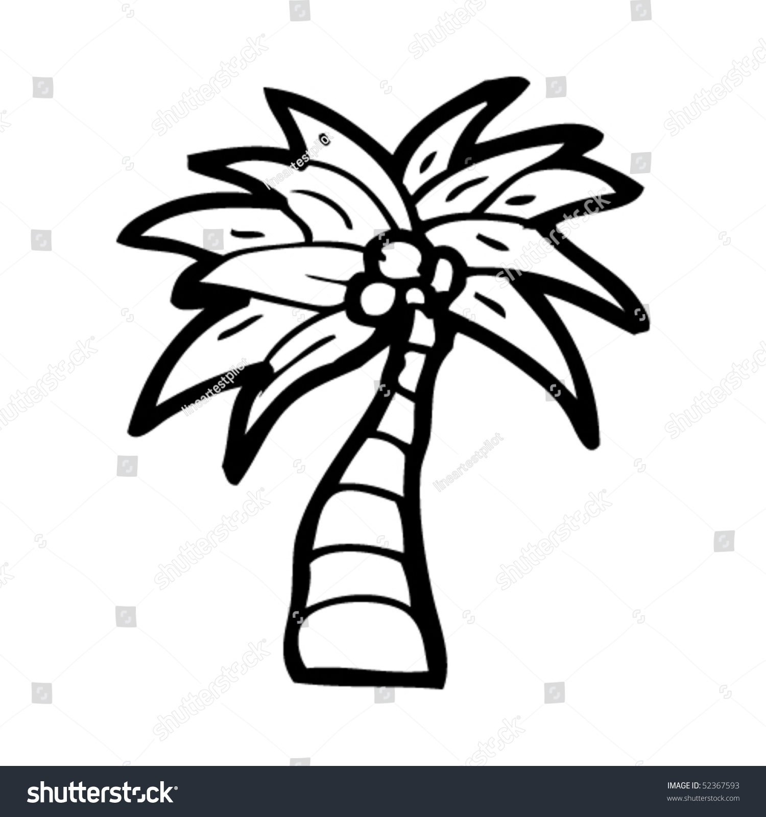 palm tree with coconuts drawing - photo #22