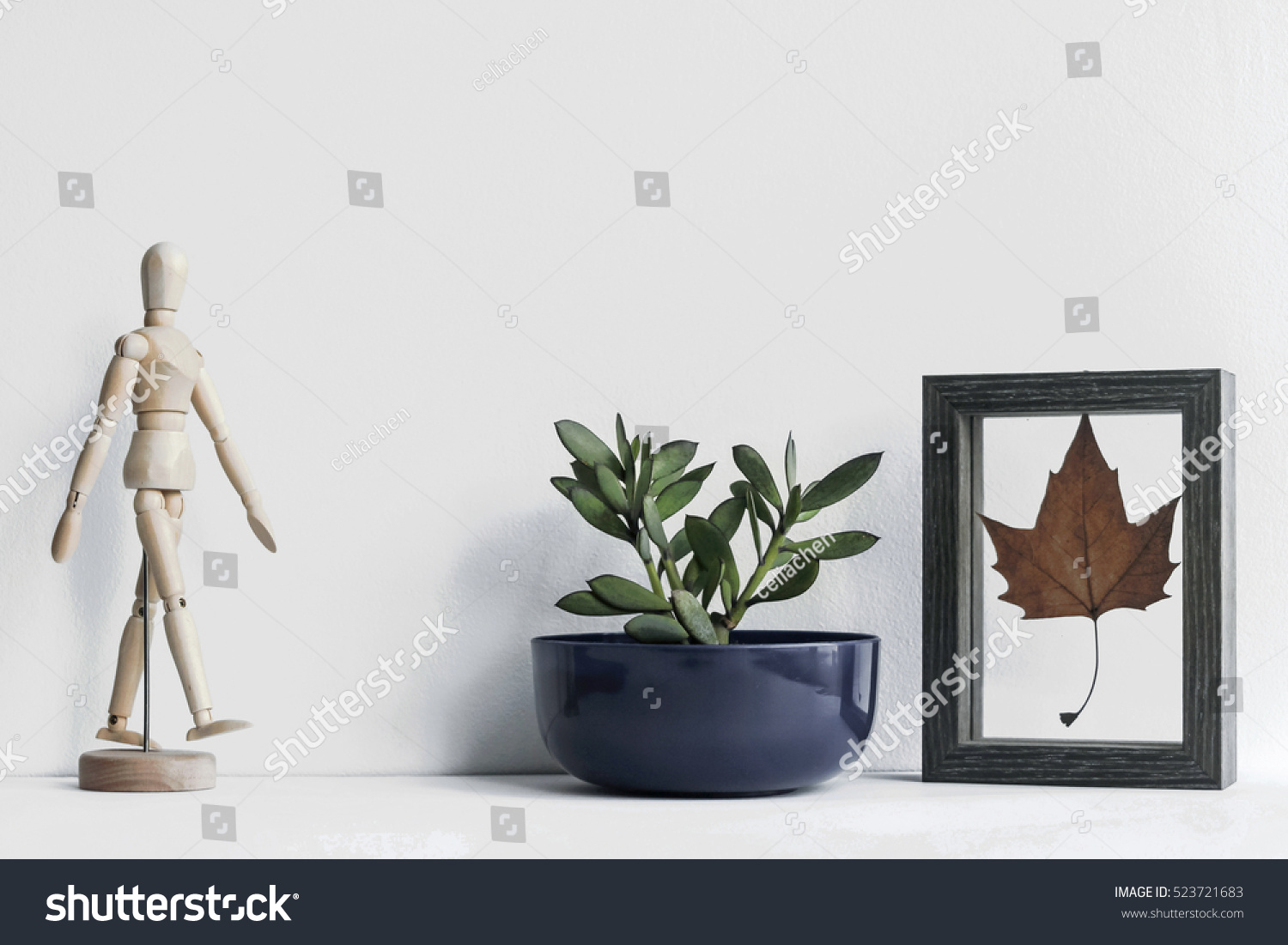 plants and decorations on white table
