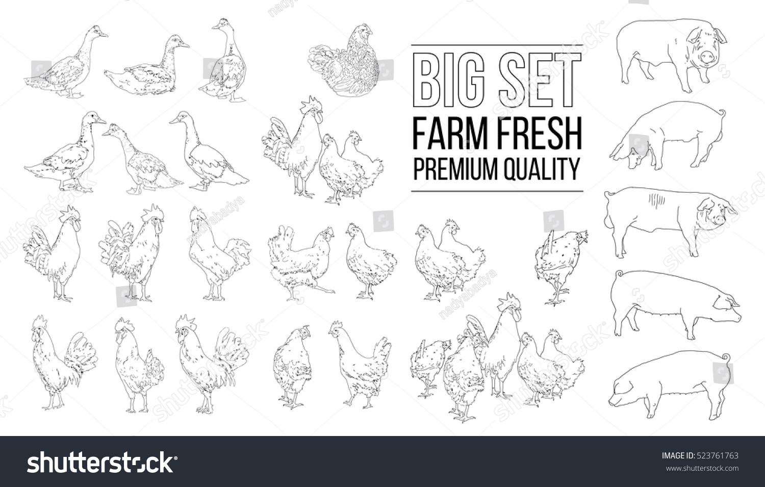 Agri cultures project logo duckdog design - Big Set Of Hand Drawn Agriculture Animals Vector Set Farm Animals Poultry