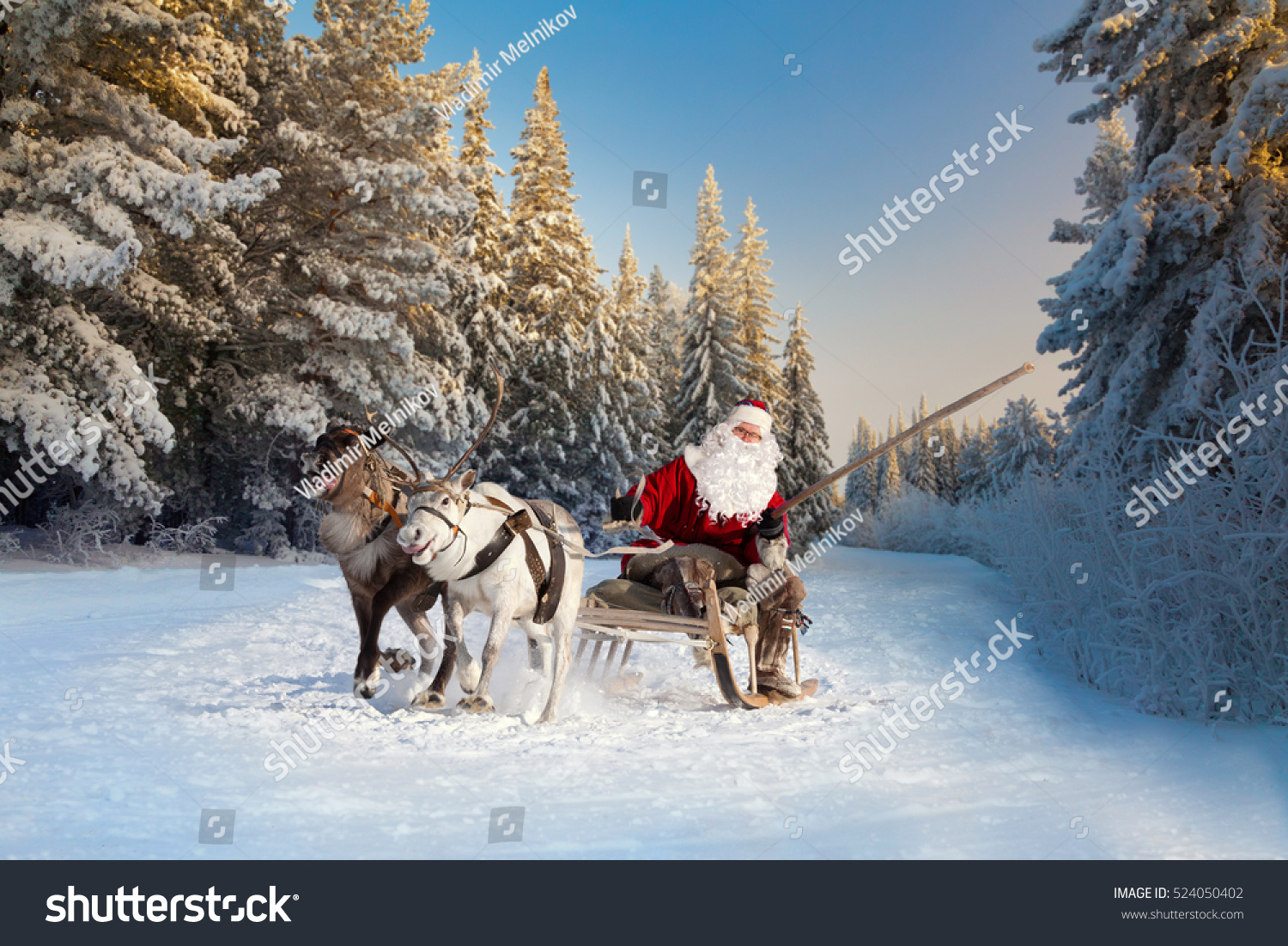 Santa claus his reindeer forest stock photo