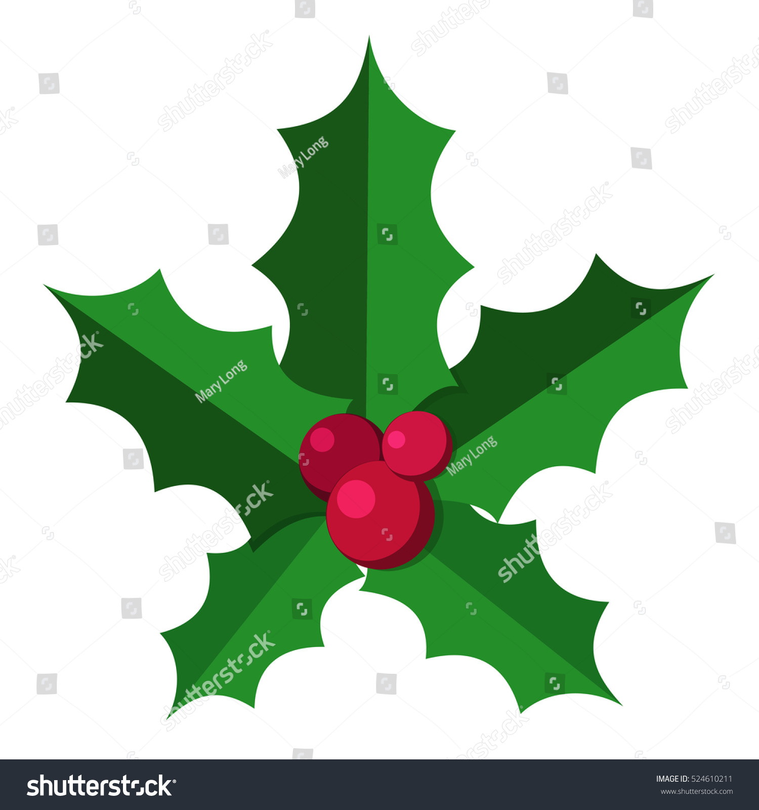 Why is holly a traditional christmas decoration - European Christmas Berry Holly Ilex Aquifolium Leaves And Fruit Floral Branch Red Xmas Winter Decor