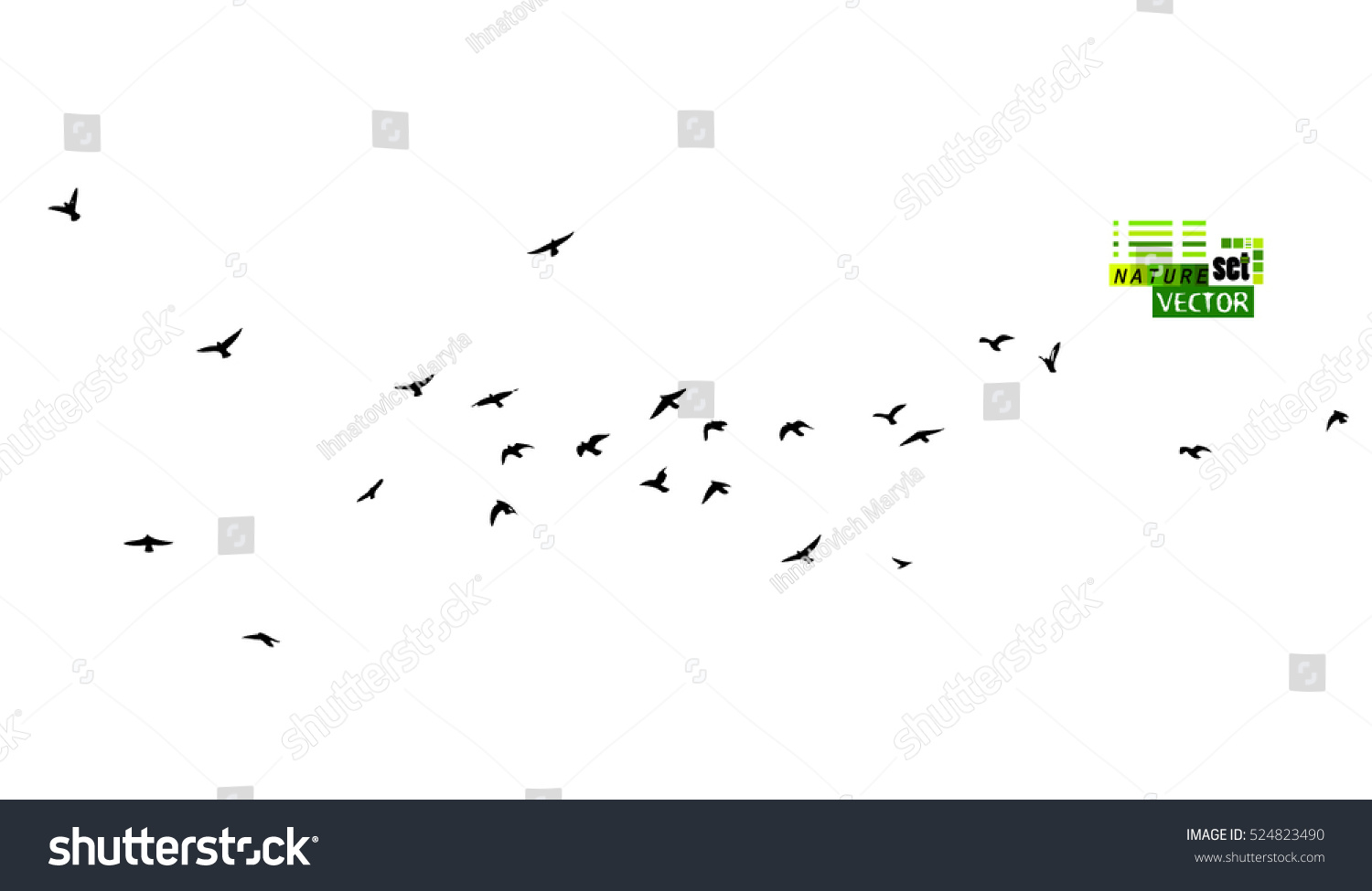 Flock Flying Birds Vector 524823490