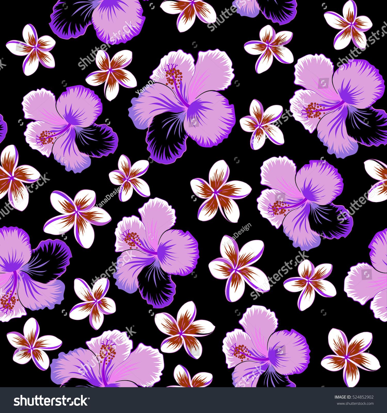 Sc Design Stoelen.Hibiscus Flowers On Black Background Violet Stock Vector Royalty