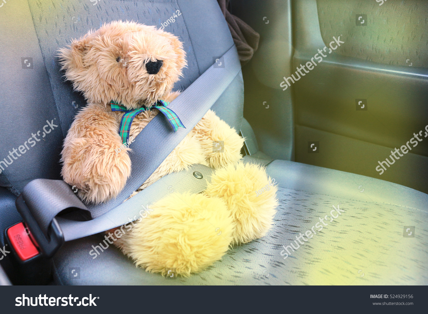 seat belt bear safety demonstration