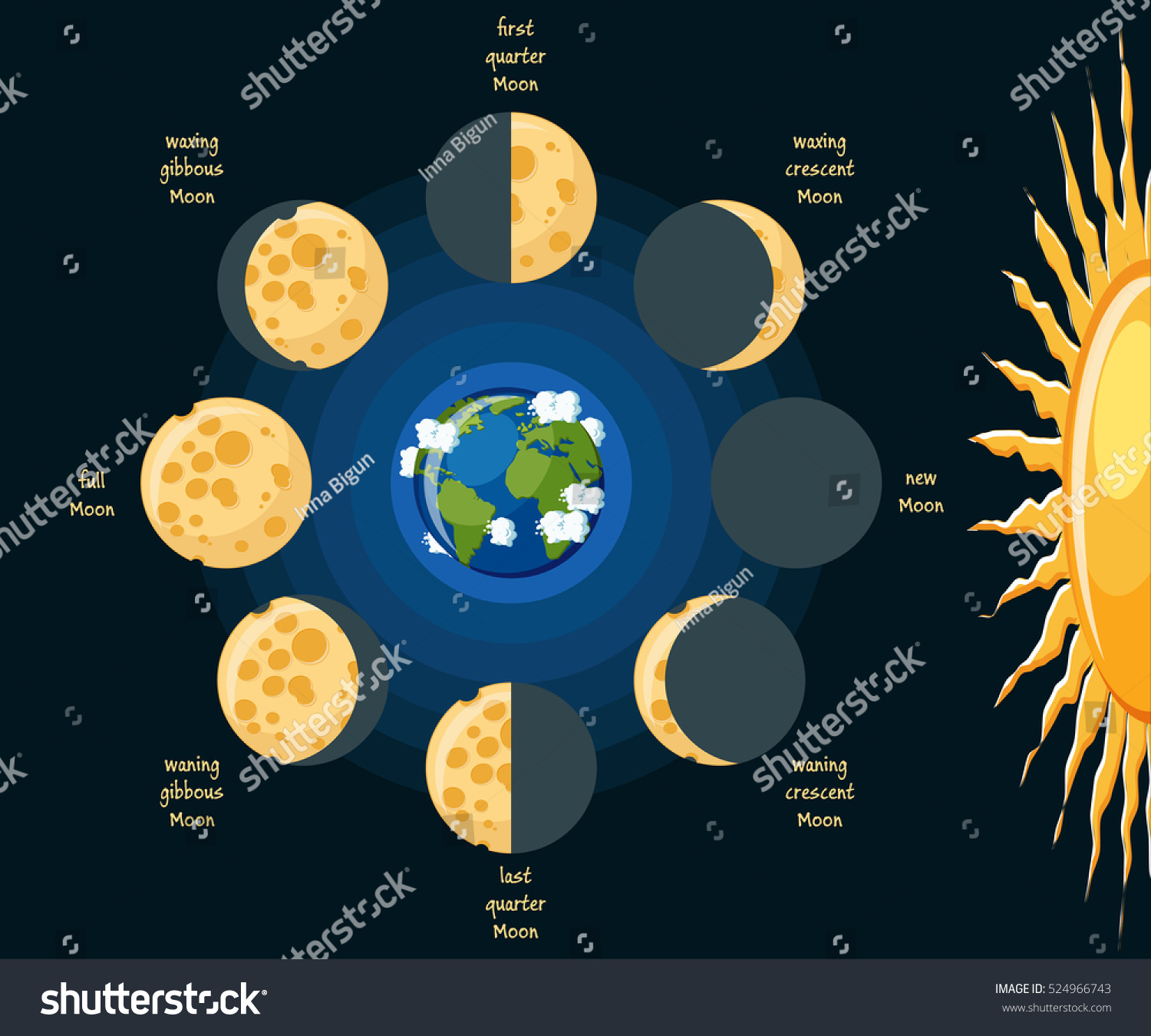 Basic moon phases diagram cheese moon stock vector 524966743 basic moon phases diagram cheese moon in its different phases depending on position relative to pooptronica Gallery
