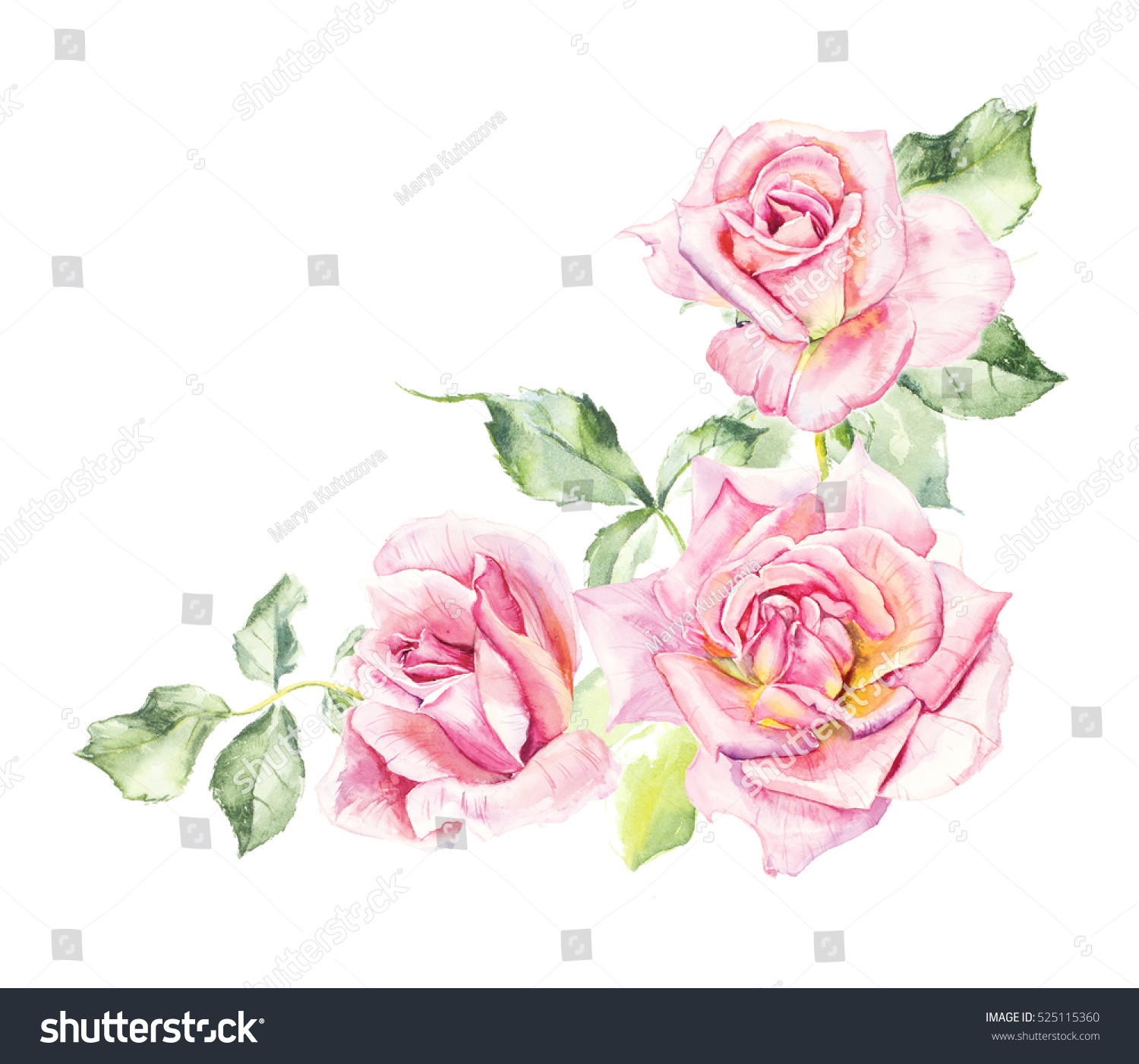 Painting Of Rose Images