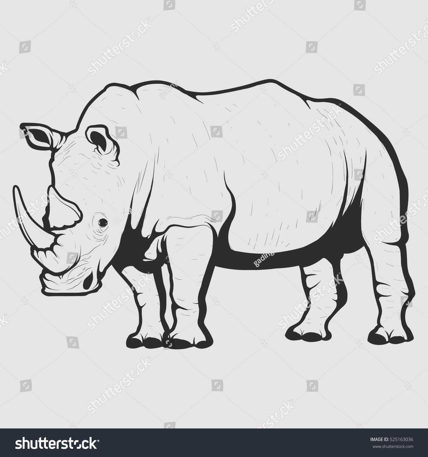 African white rhino photo window wall sticker wall mural 45200067ww