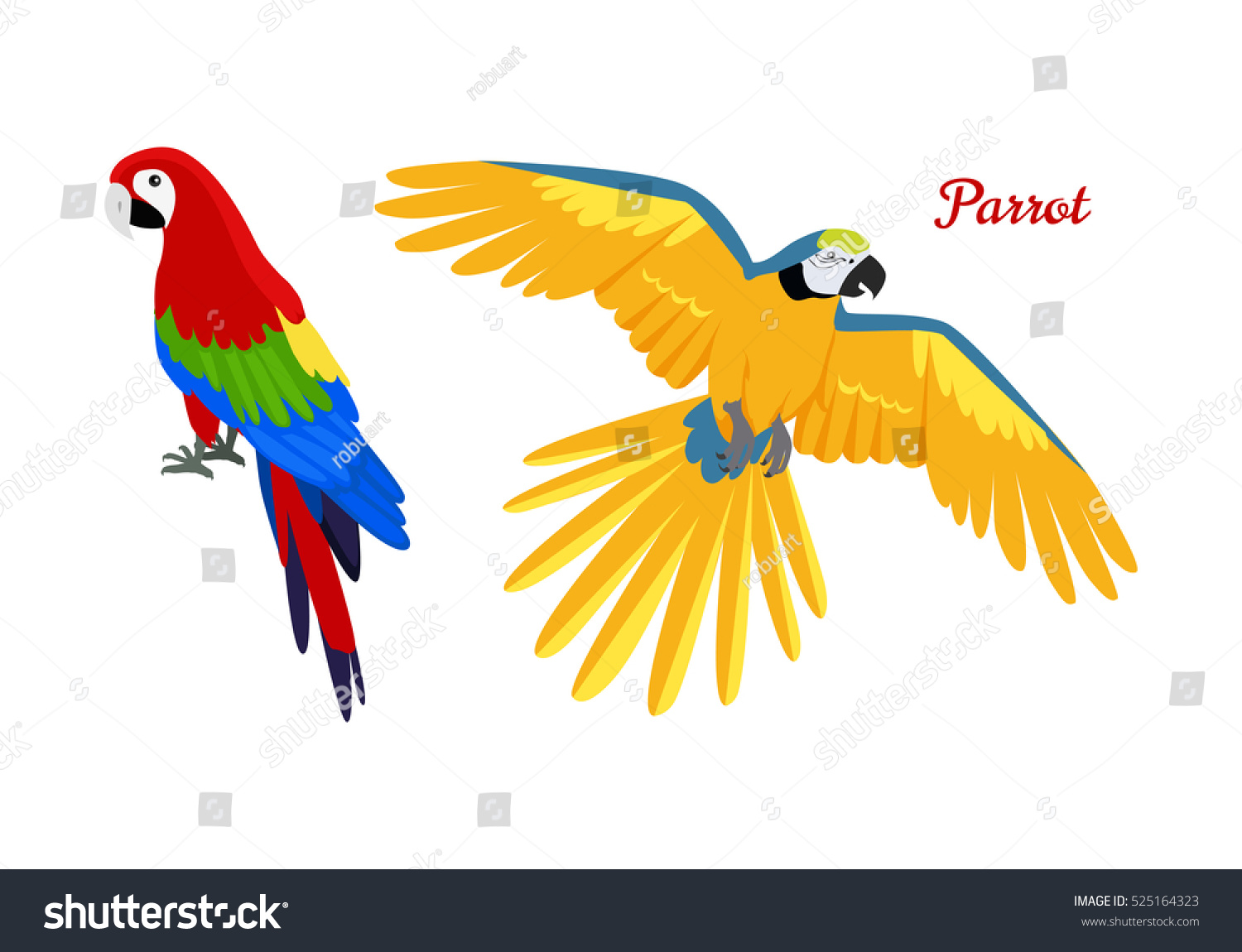 Ara Parrot Vector Birds Amazonian Forests Stock Vector 525164323 ...