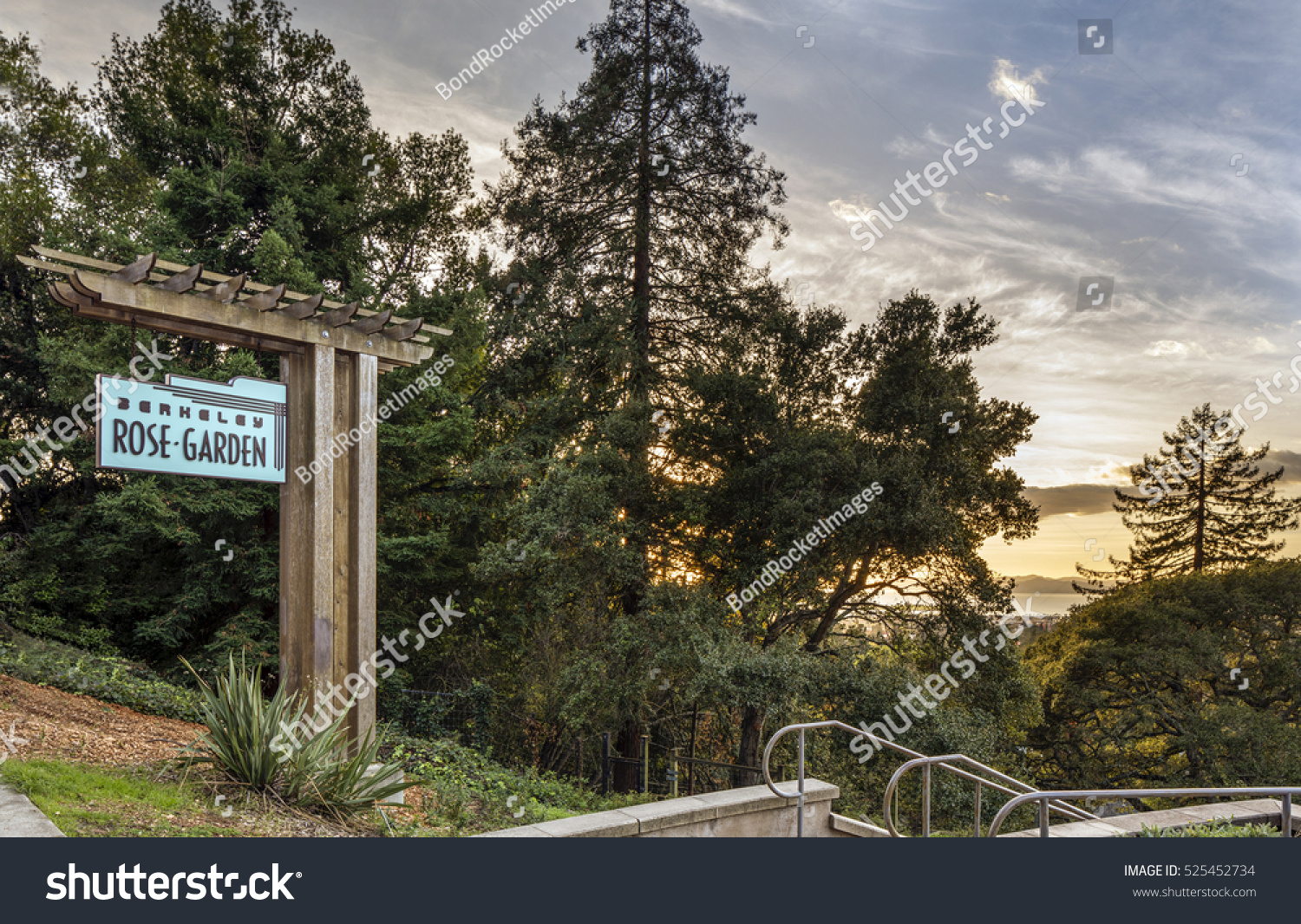 BERKELEY CA USA NOV 28 2016 Stock Photo (Edit Now) 525452734 ...
