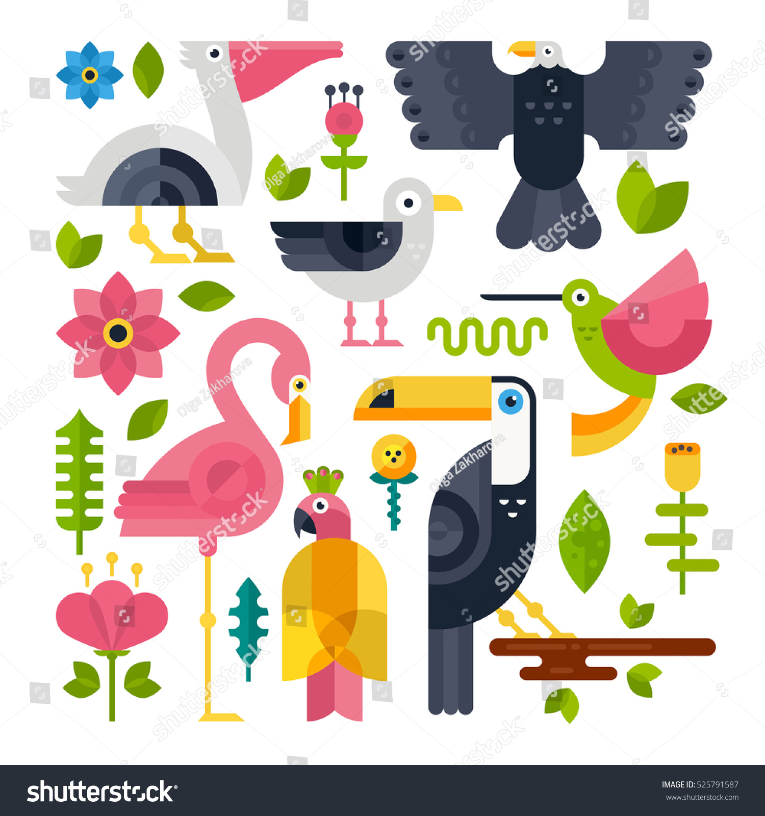 flat style illustration flamingo pelican toucan stock vector