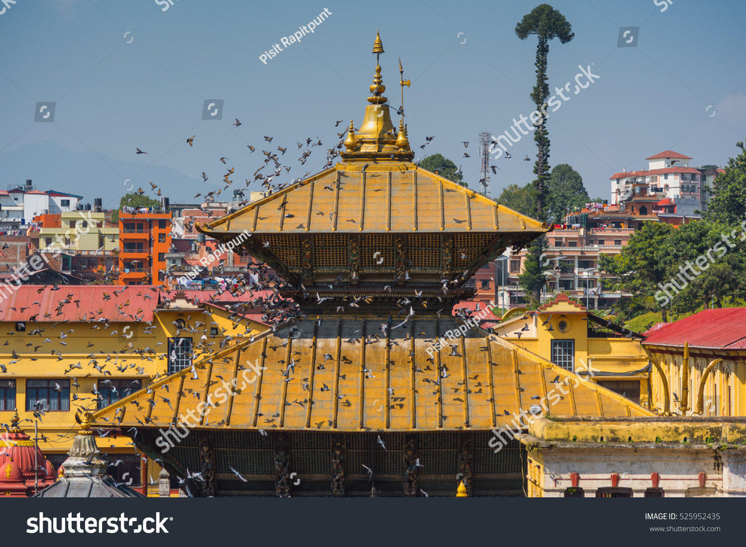 Beautiful Golden Roof at Pashupatinath Temple Kathmandu Nepal. & Beautiful Golden Roof Pashupatinath Temple Kathmandu Stock Photo ... memphite.com