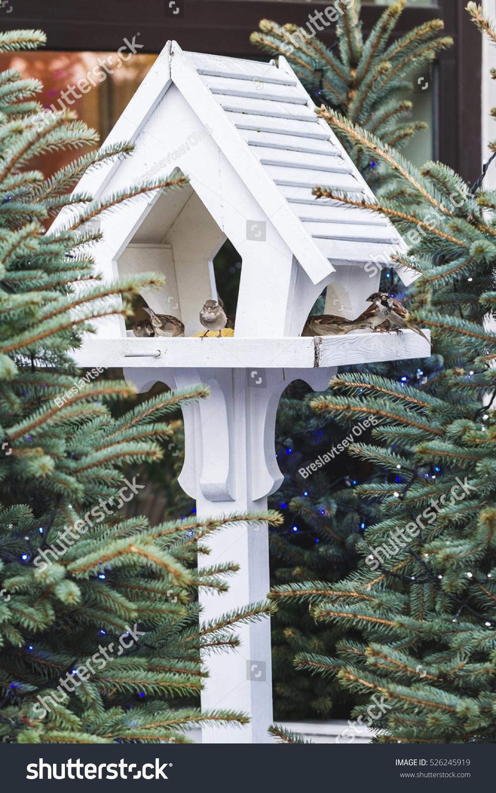 lovely outdoor bird feeders in fur trees decorations for christmas - Outdoor Christmas Tree Decorations For Birds