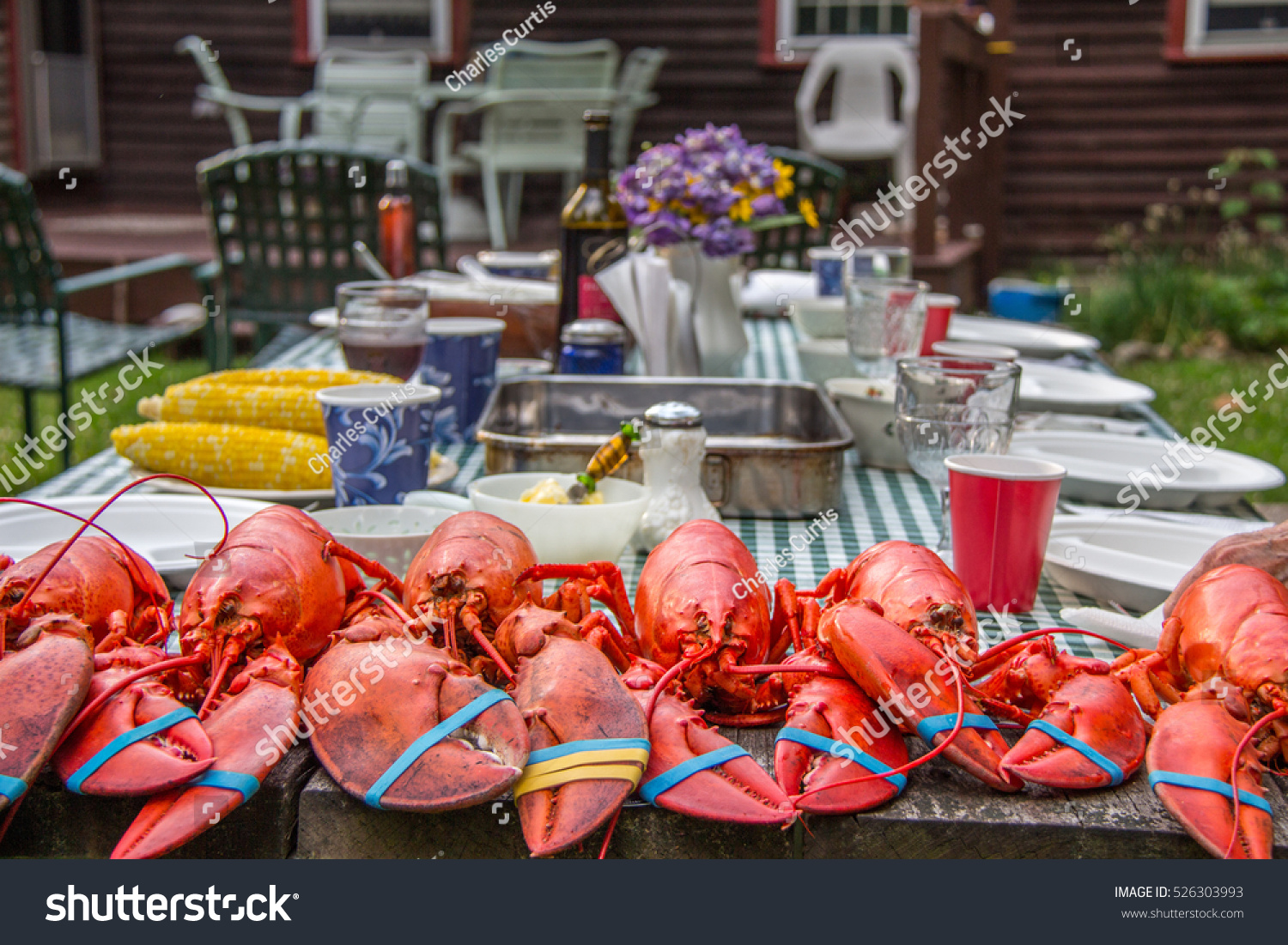Lobster Feast HUGE Lobsters Picnic Table Stock Photo Edit Now - Huge picnic table