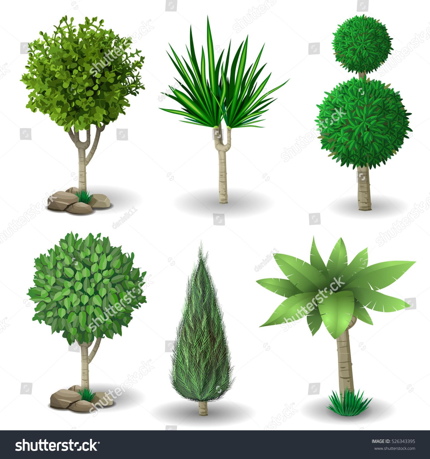 set ornamental plants trees landscaping vector stock vector