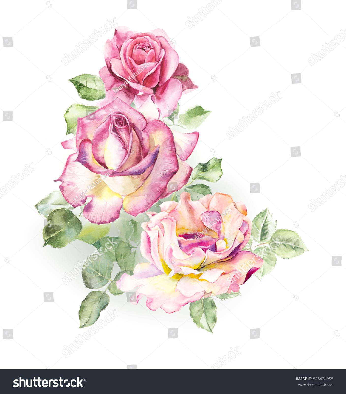 Rosebush Pattern From Pink Rose Wedding Drawings Watercolor