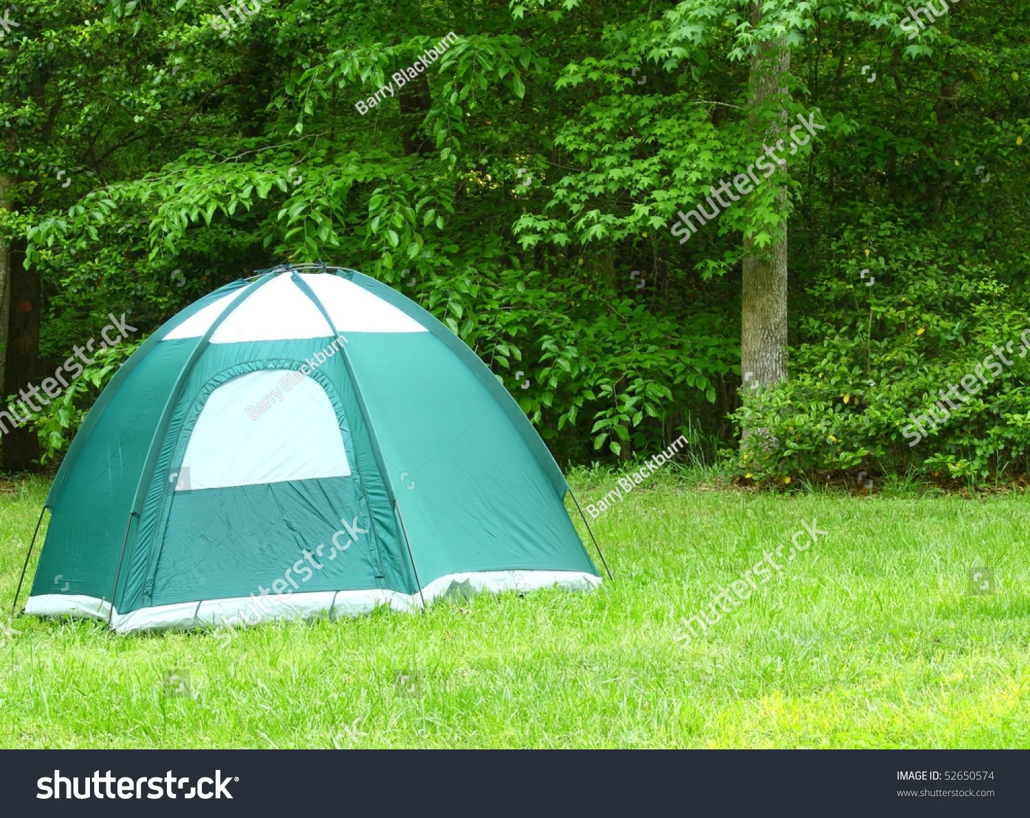 A c&ing tent in a field in the woods with room for your text & Camping Tent Field Woods Room Your Stock Photo 52650574 - Shutterstock