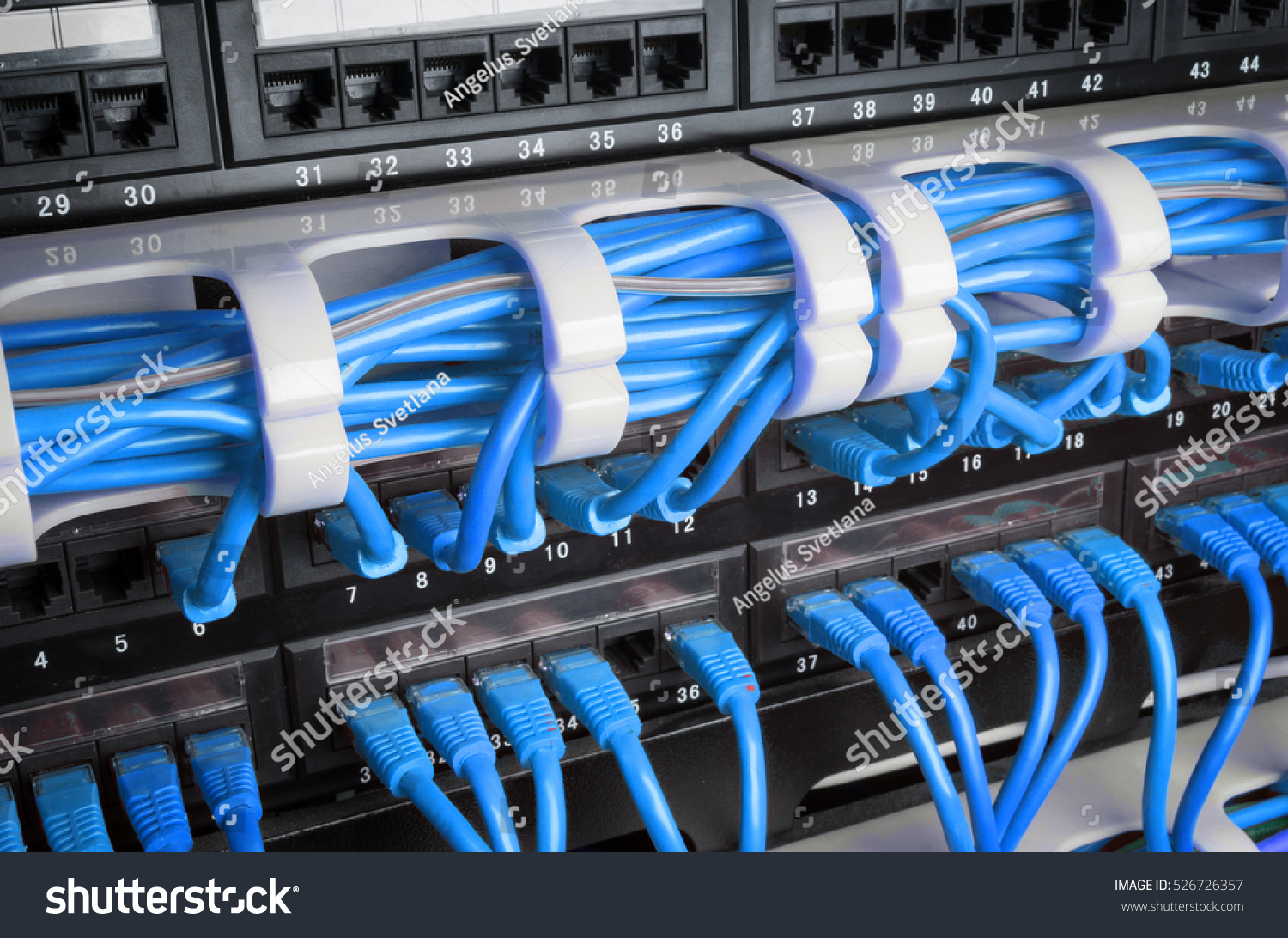 Server Rack Blue Internet Patch Cord Stock Photo Edit Now For Panel Of System On Wiring House Ethernet With Cables Connected To In Room