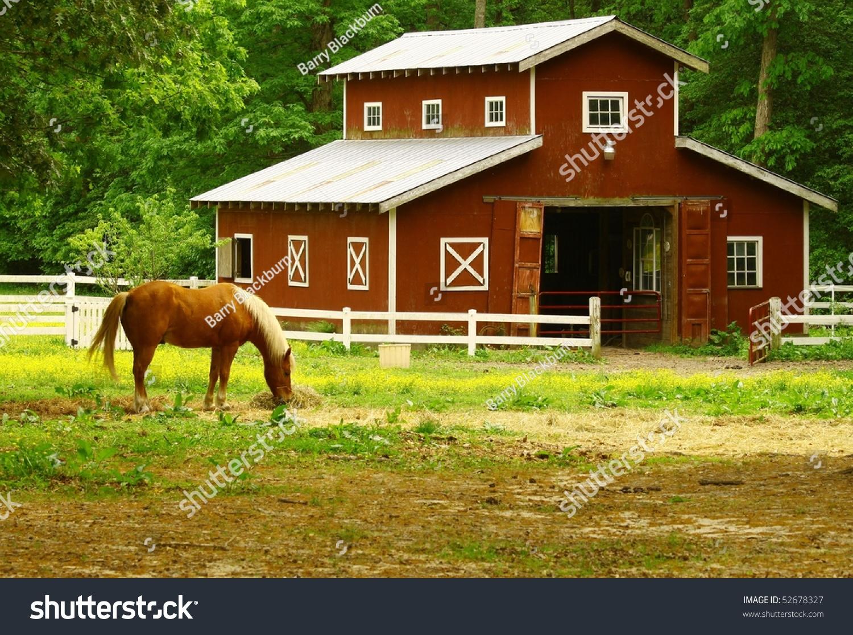 Old Horse Barn Horse Eating Straw Stock Photo 52678327