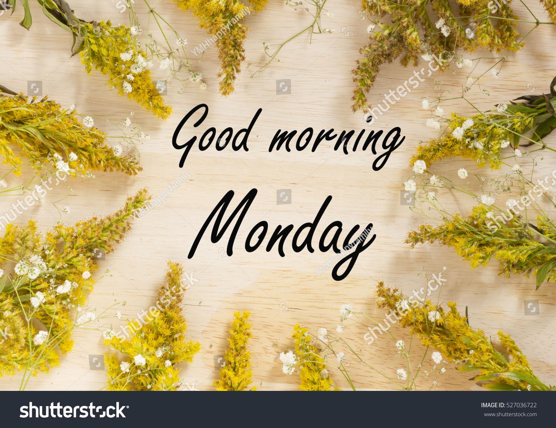 Royalty free good morning monday yellow flowers 527036722 stock good morning monday yellow flowers background 527036722 mightylinksfo