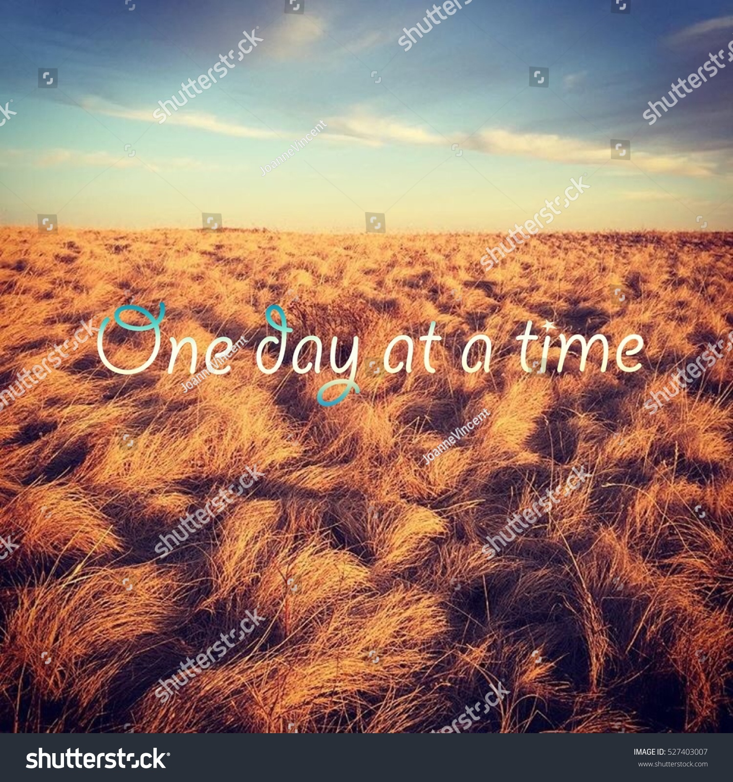 One day at a time. Bright colorful field landscape with blue sky