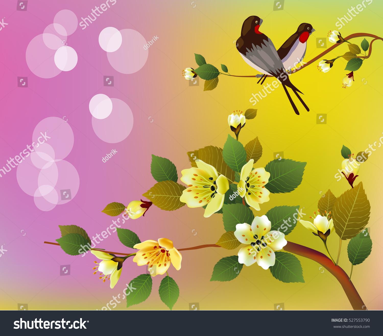 sakuraevening garden blooming cherry birds singvector stock vector