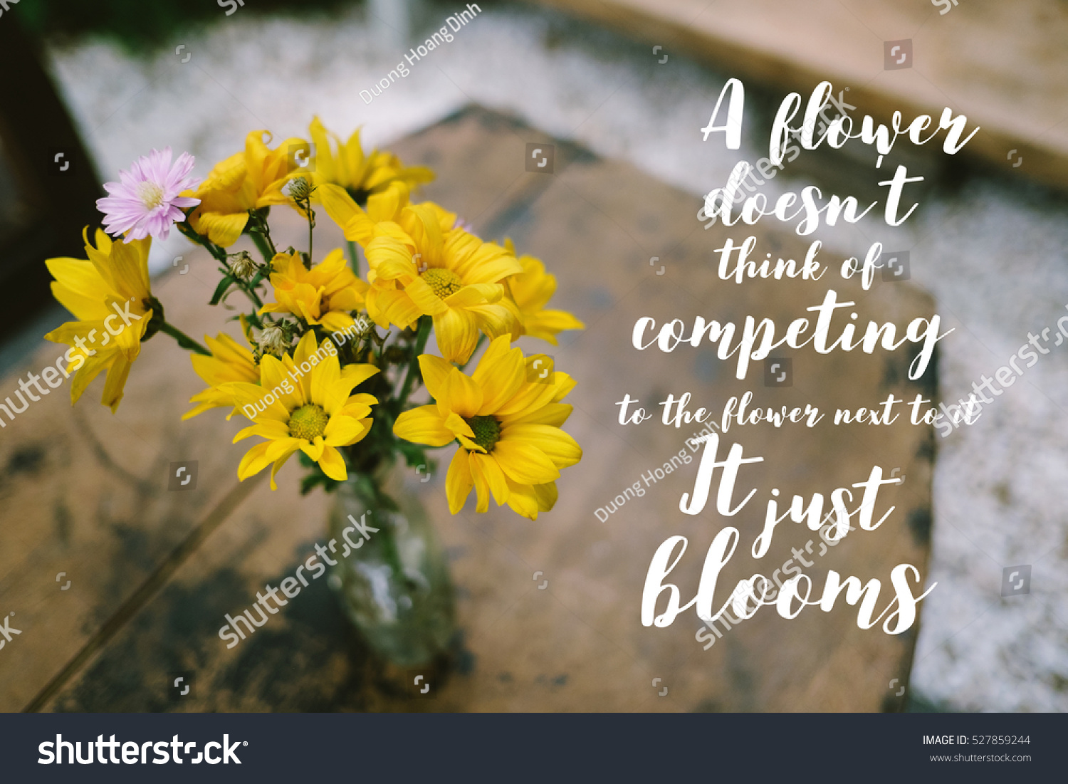 Inspirational Quote On Blurred Yellow Flowers Stock Photo Edit Now 527859244