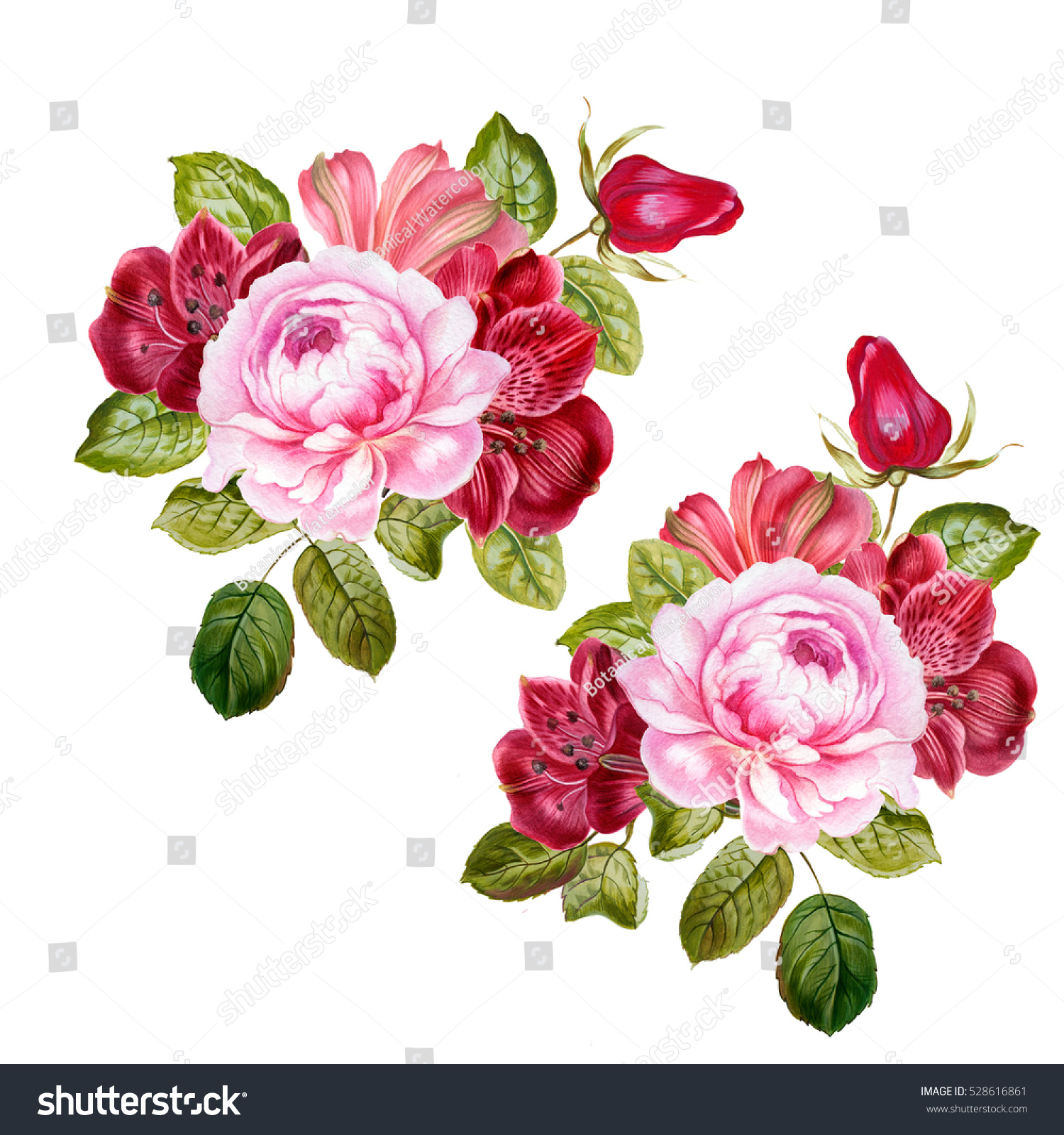 Pink Flowers Bouquets Illustration Watercolor Can Stock Illustration ...