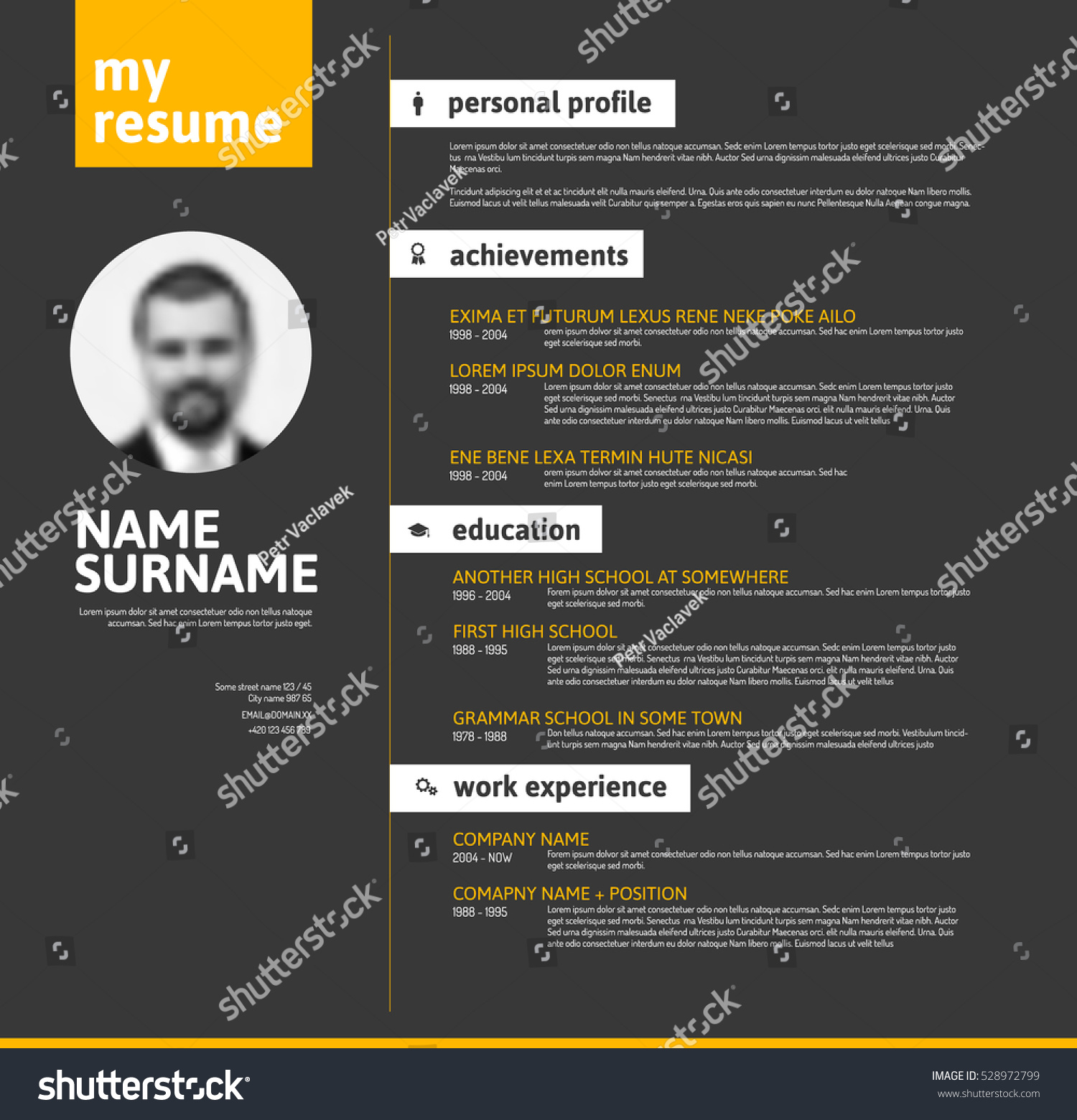 vector minimalist cv resume template nice stock vector