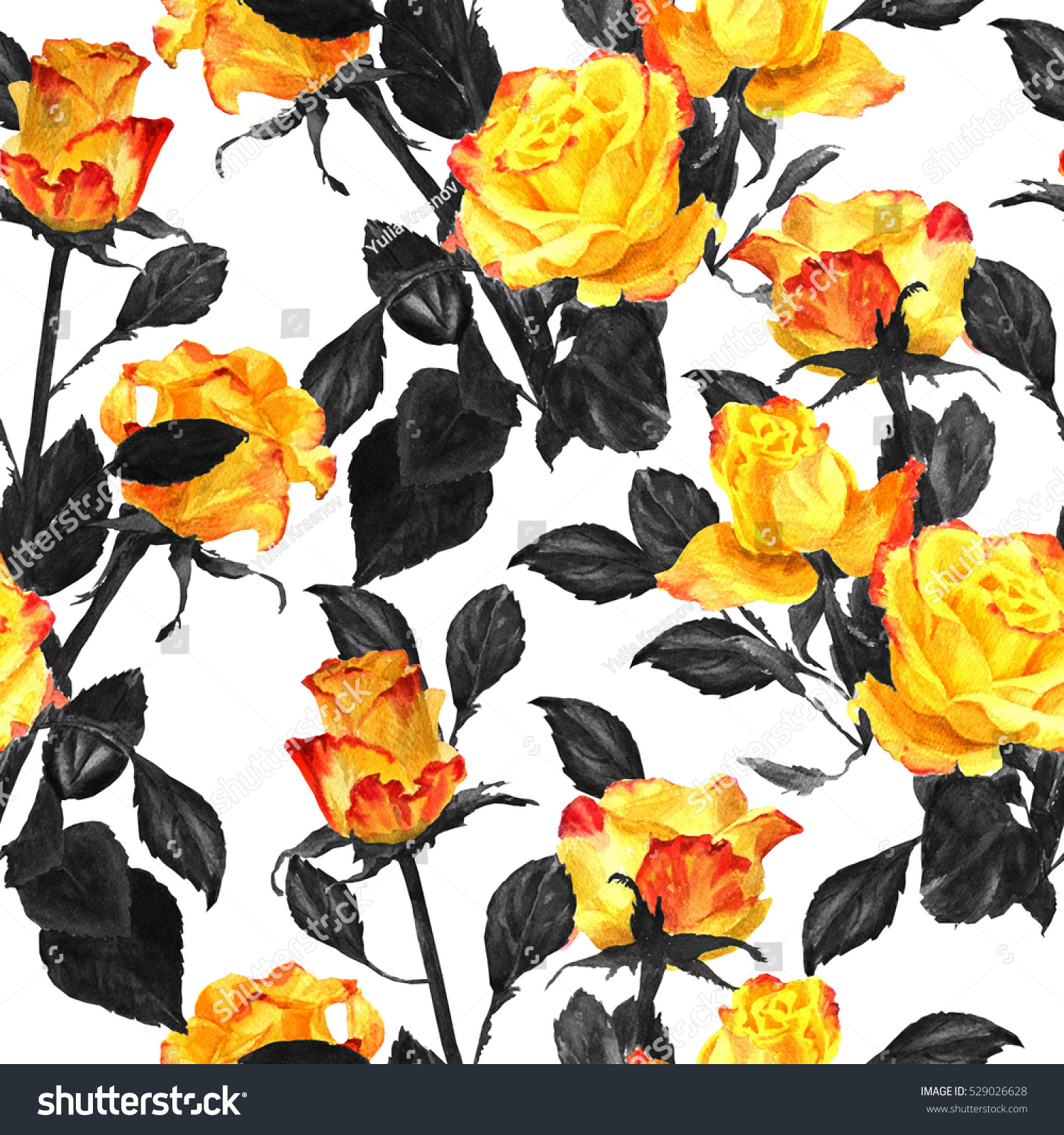 Yellow And Black Leaves On Roses - Best Rose 2017