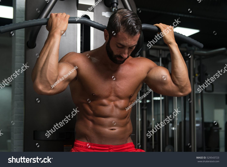 Latin muscle